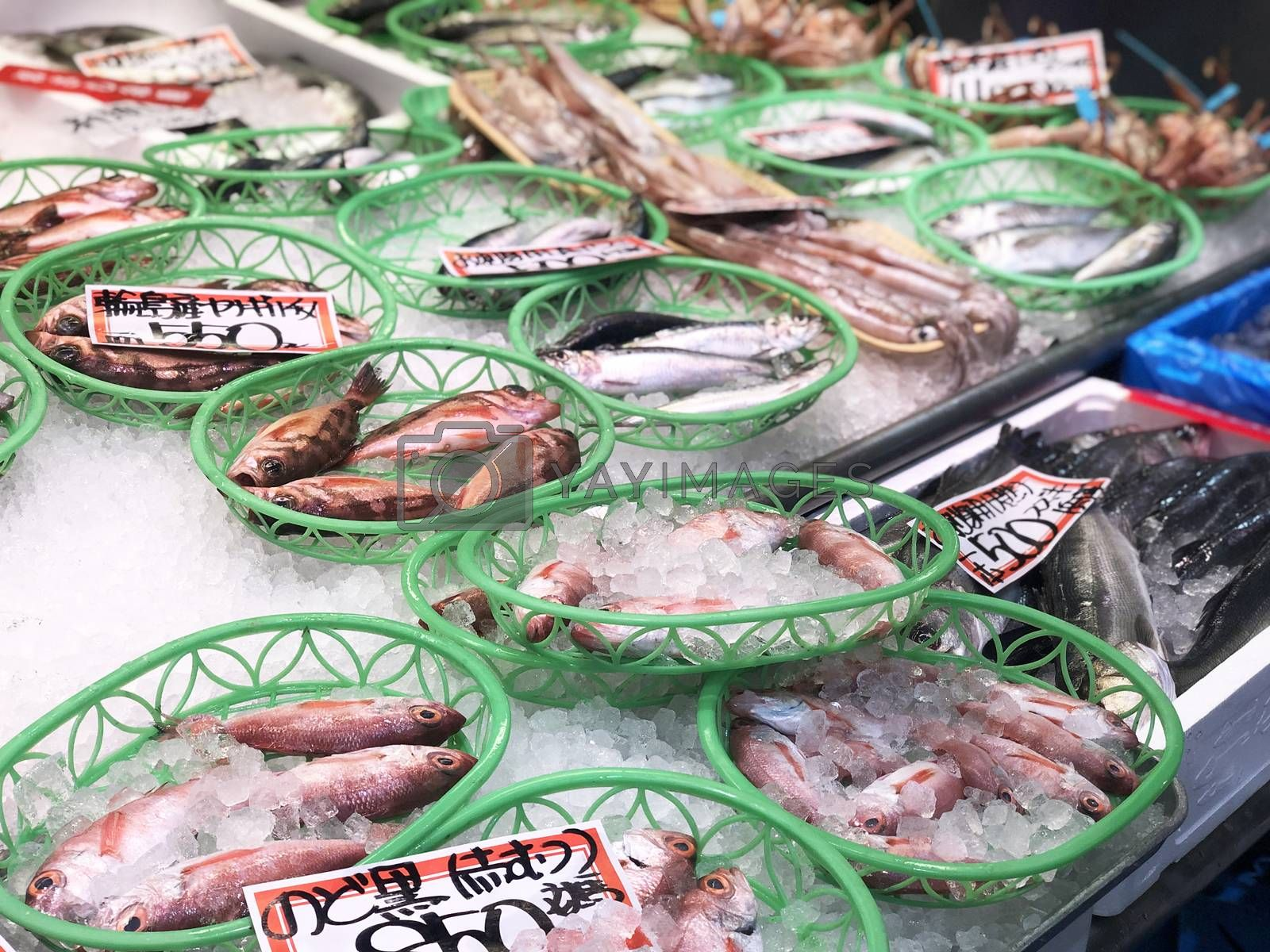 Fresh fish and seafood in fresh market in Tomari Fish Market in Japan