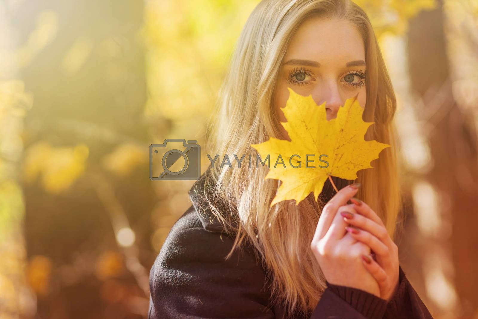 Young woman with beautiful eyes covers her face with a yellow maple leaf. Horizontally.