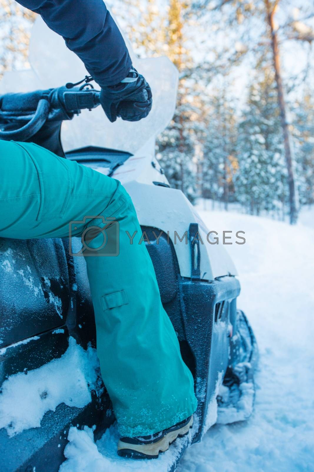 Royalty free image of Rider on the snowmobile by destillat