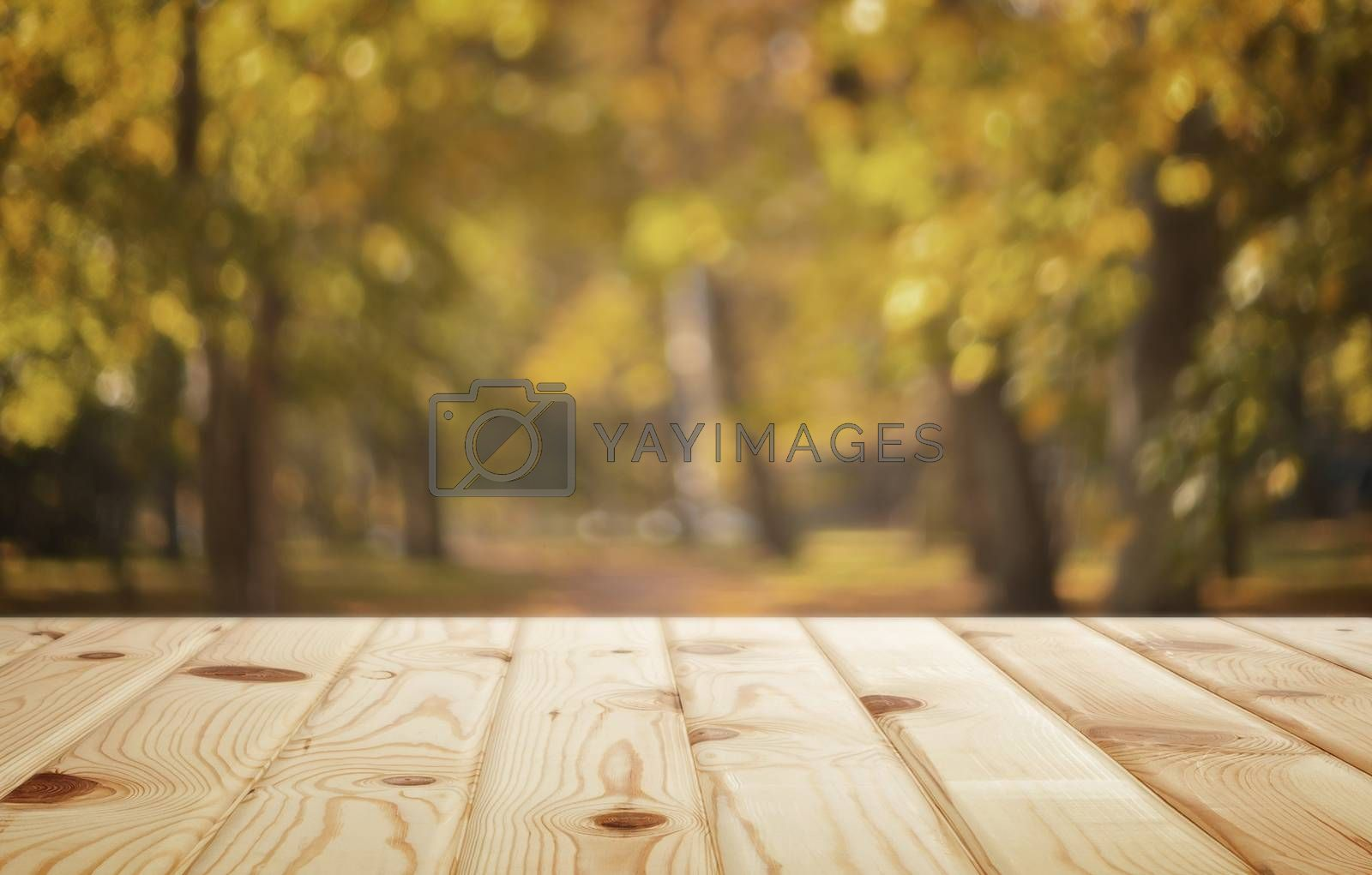 Autumn background image: wooden table in autumn Park. by georgina198