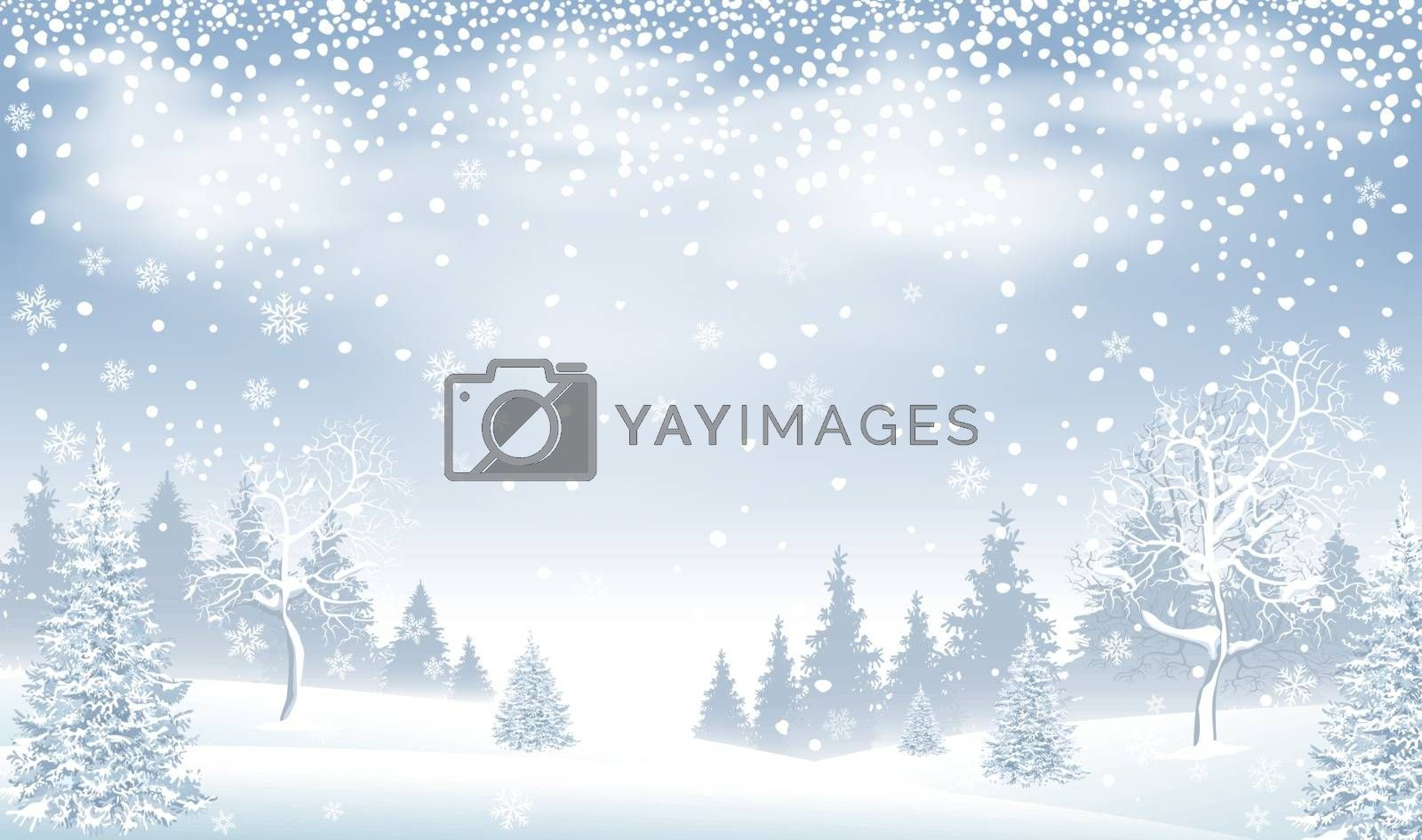 Winter landscape. Snow-covered forest, spruce and snow-covered trees. Snowfall. Snow, snowflakes. Winter scene.