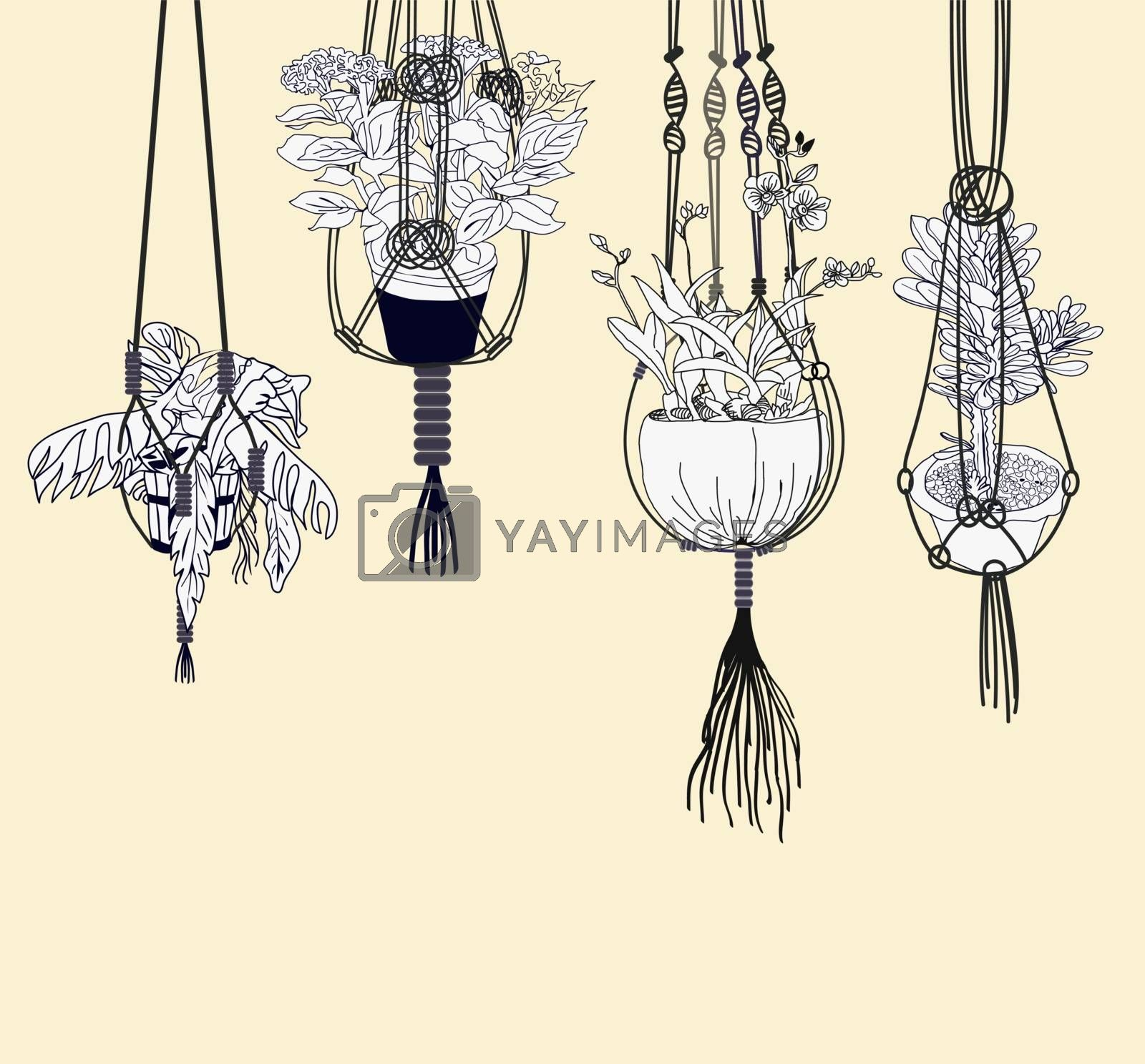 Houseplant flower pot collection, Greenery at home. Home garden illustration. Set of macrame hangers for plants growing in pots.
