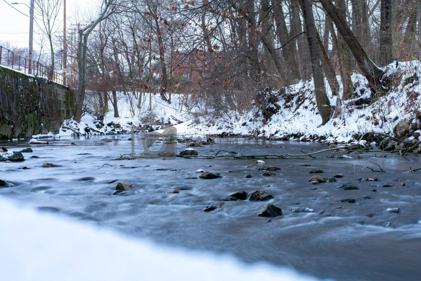 A Long Exposure of a Small Flowing Creek Next to a Snow Covered Bank With Trees and Foliage