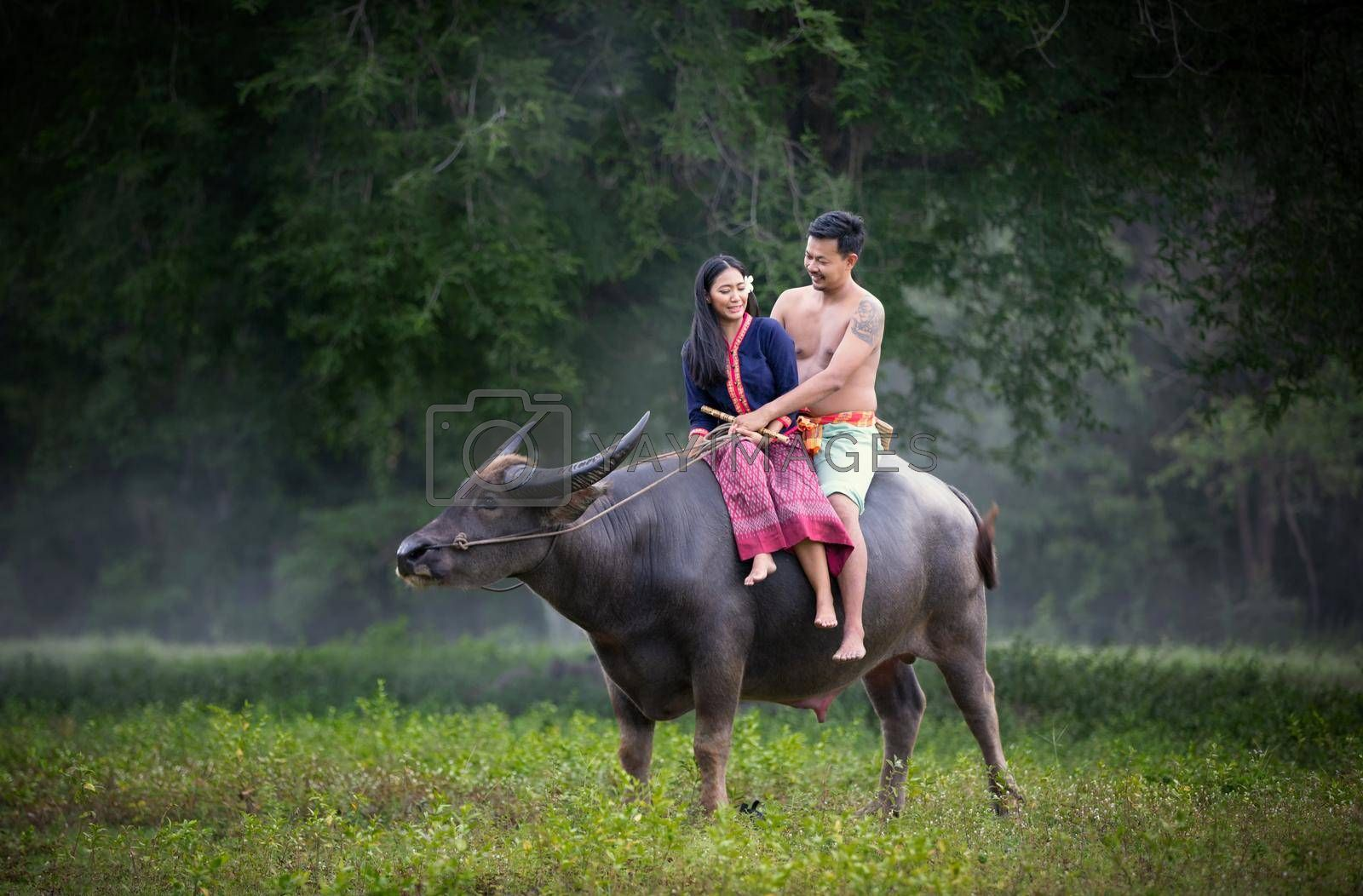 Men and women sitting by tree and buffalo in rural fields