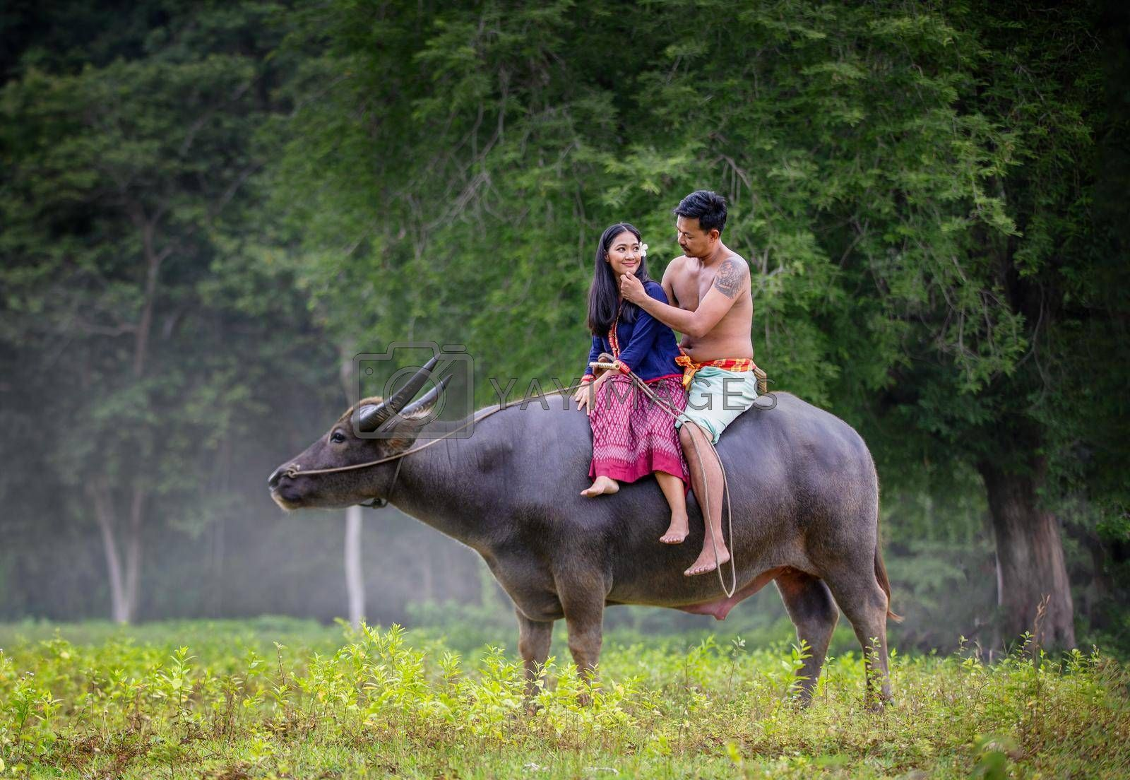 Men and women riding buffalo in rural fields