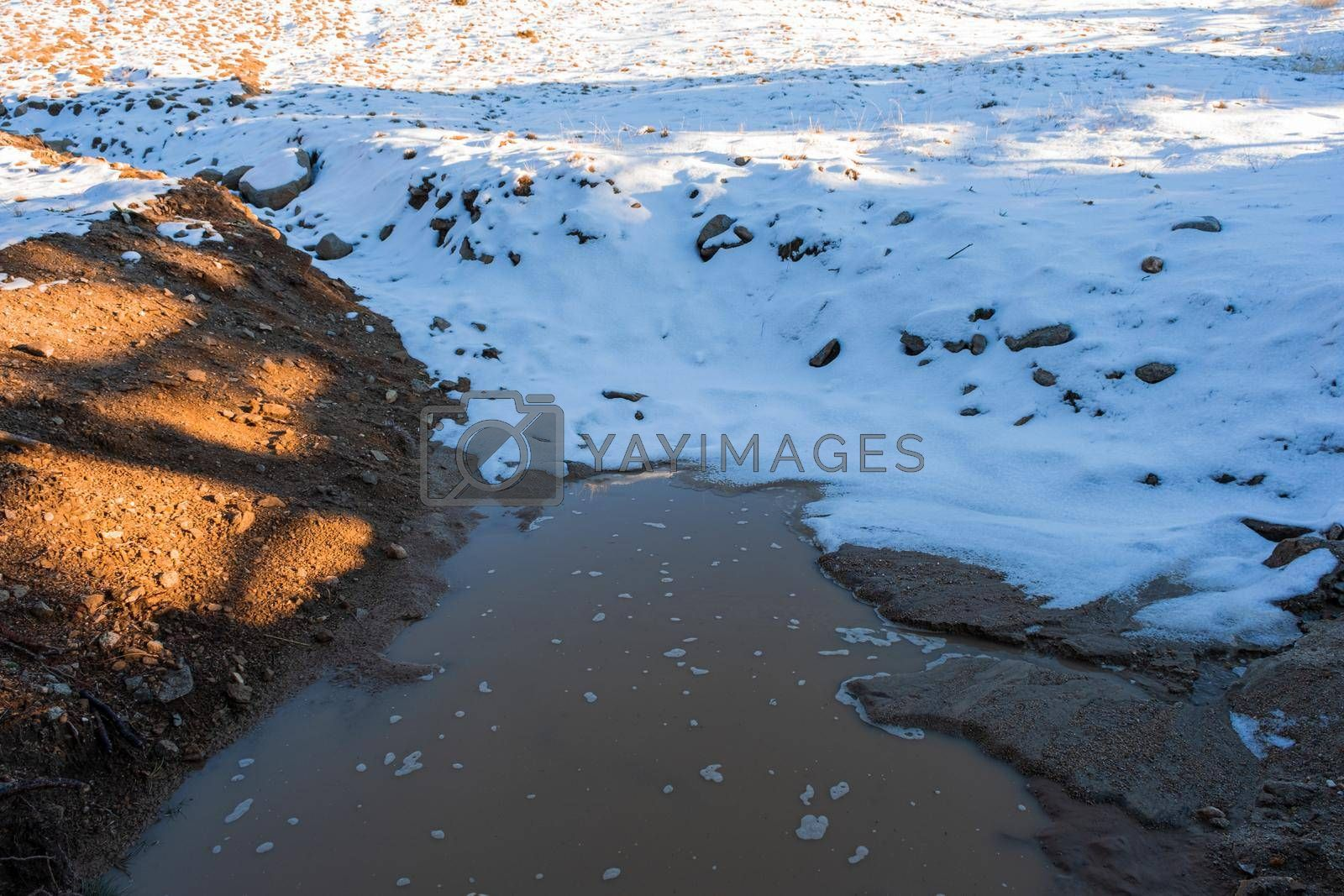 It depicts a water puddle composed of melted ice and snow around