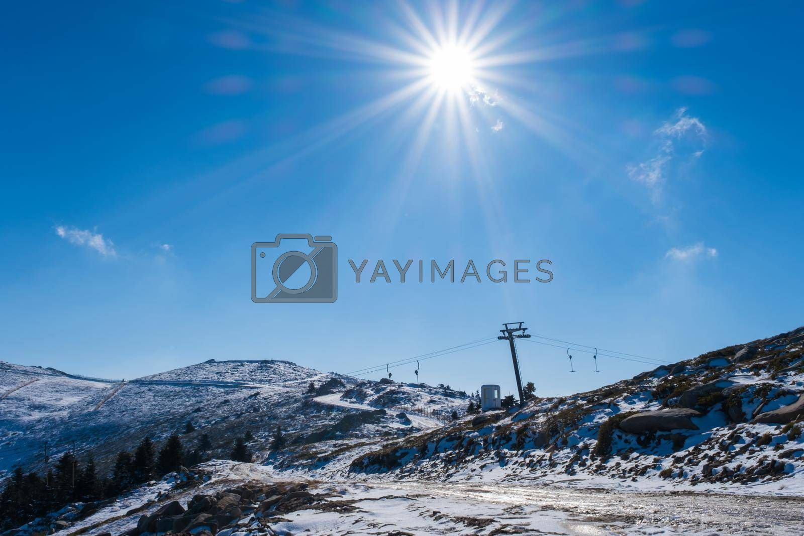 It depicts Sun Light Beams Covering the Frame on the Snowy Mountain in Winter