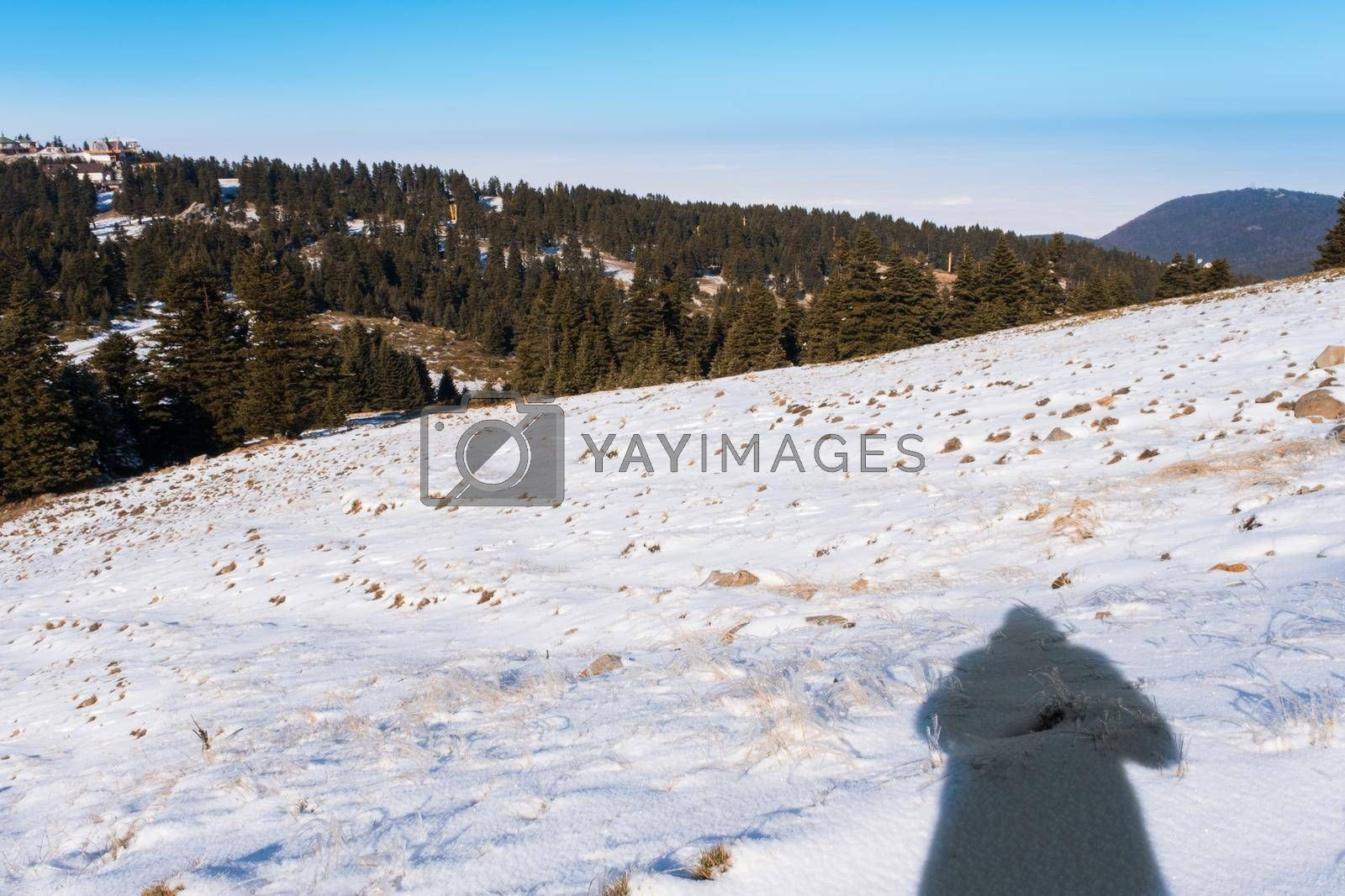 It depicts shadow of a male on snow in winter time