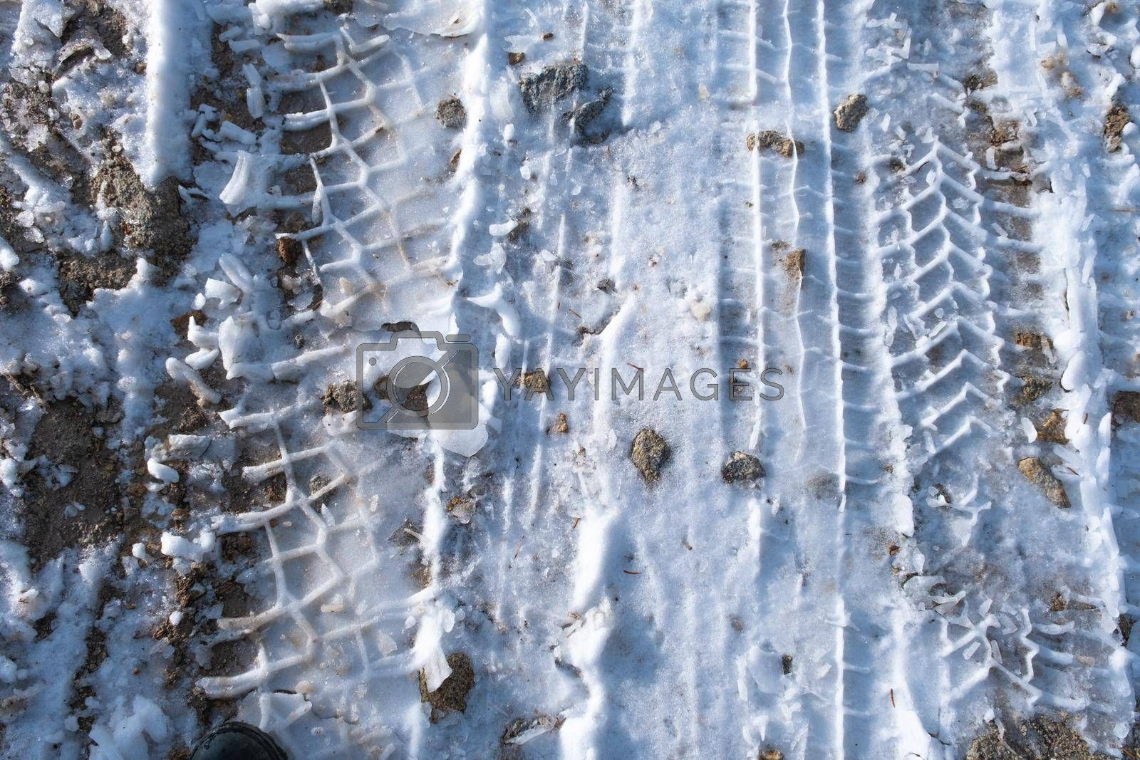 It depicts a texture of mud and some details on it