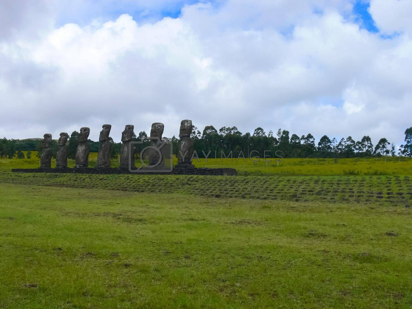 Royalty free image of Statues of gods of Easter Island by DePo