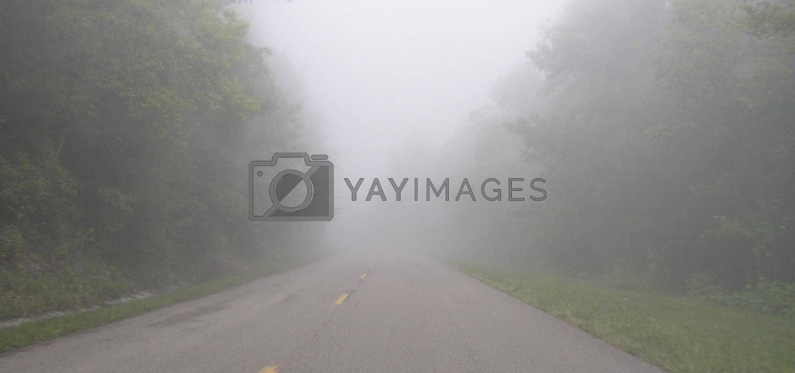 The Foothills Parkway in Tennessee with a blanket of fog