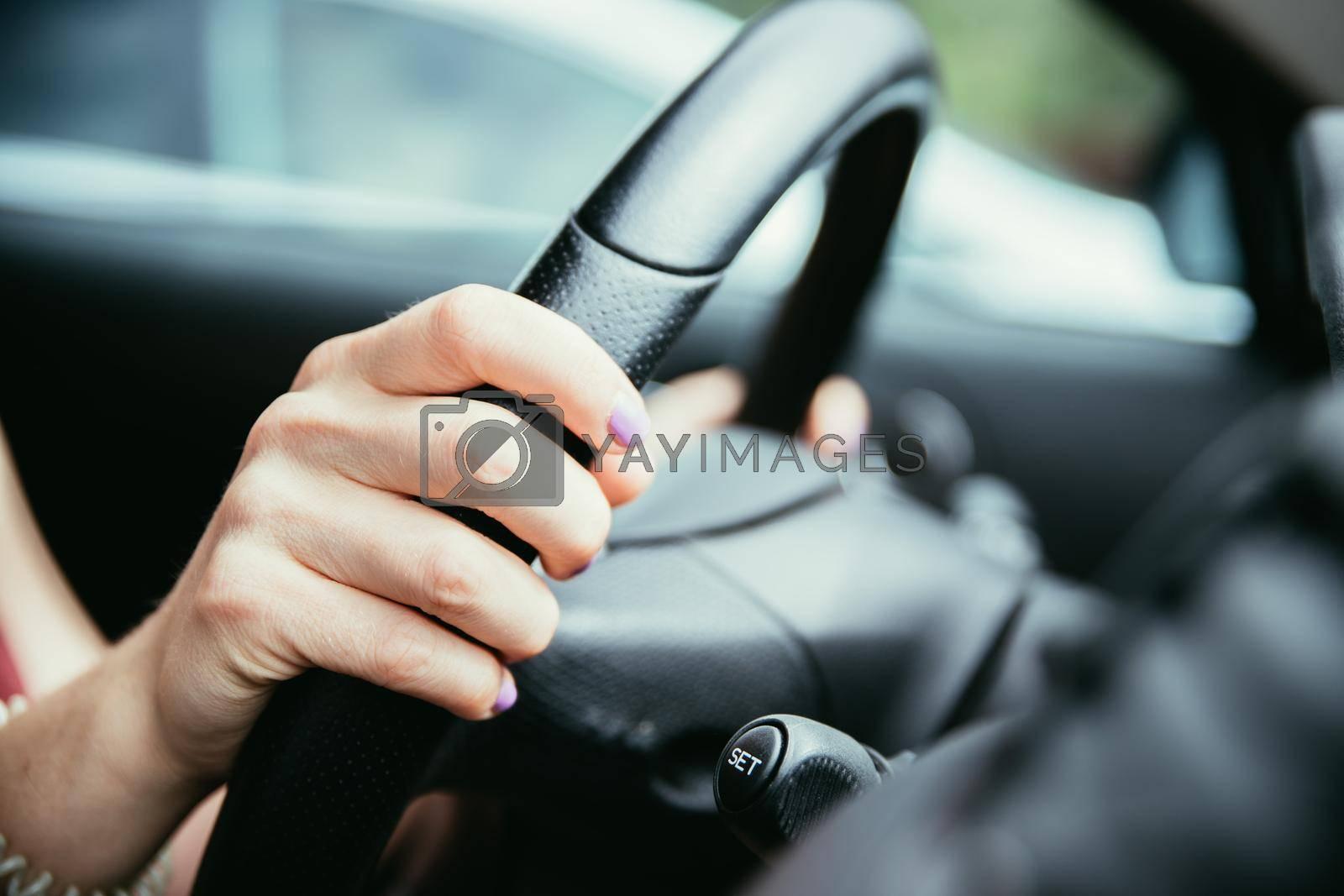 Female hands on a sports car steering wheel, car interior