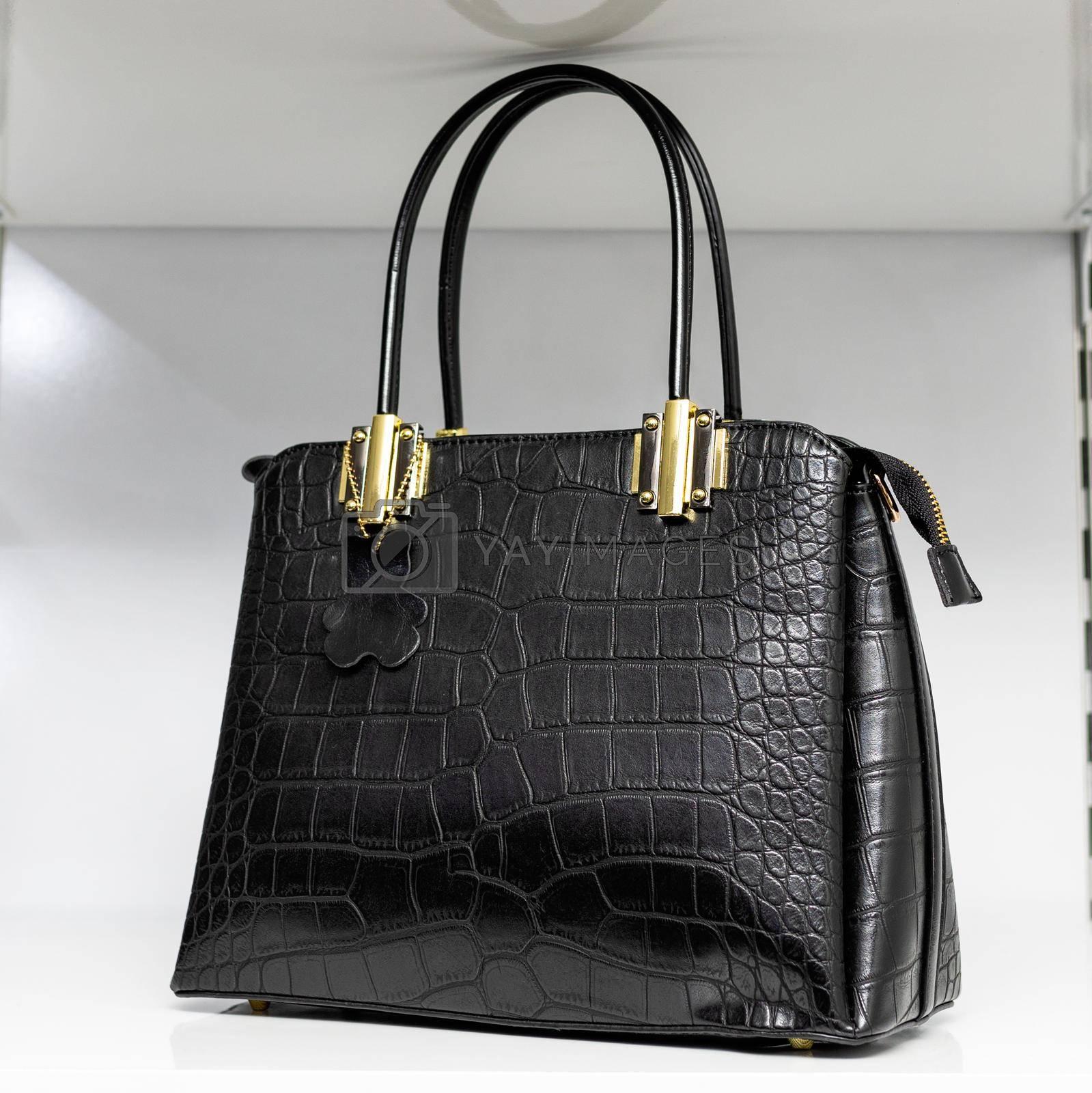 Beautiful woman bag close up