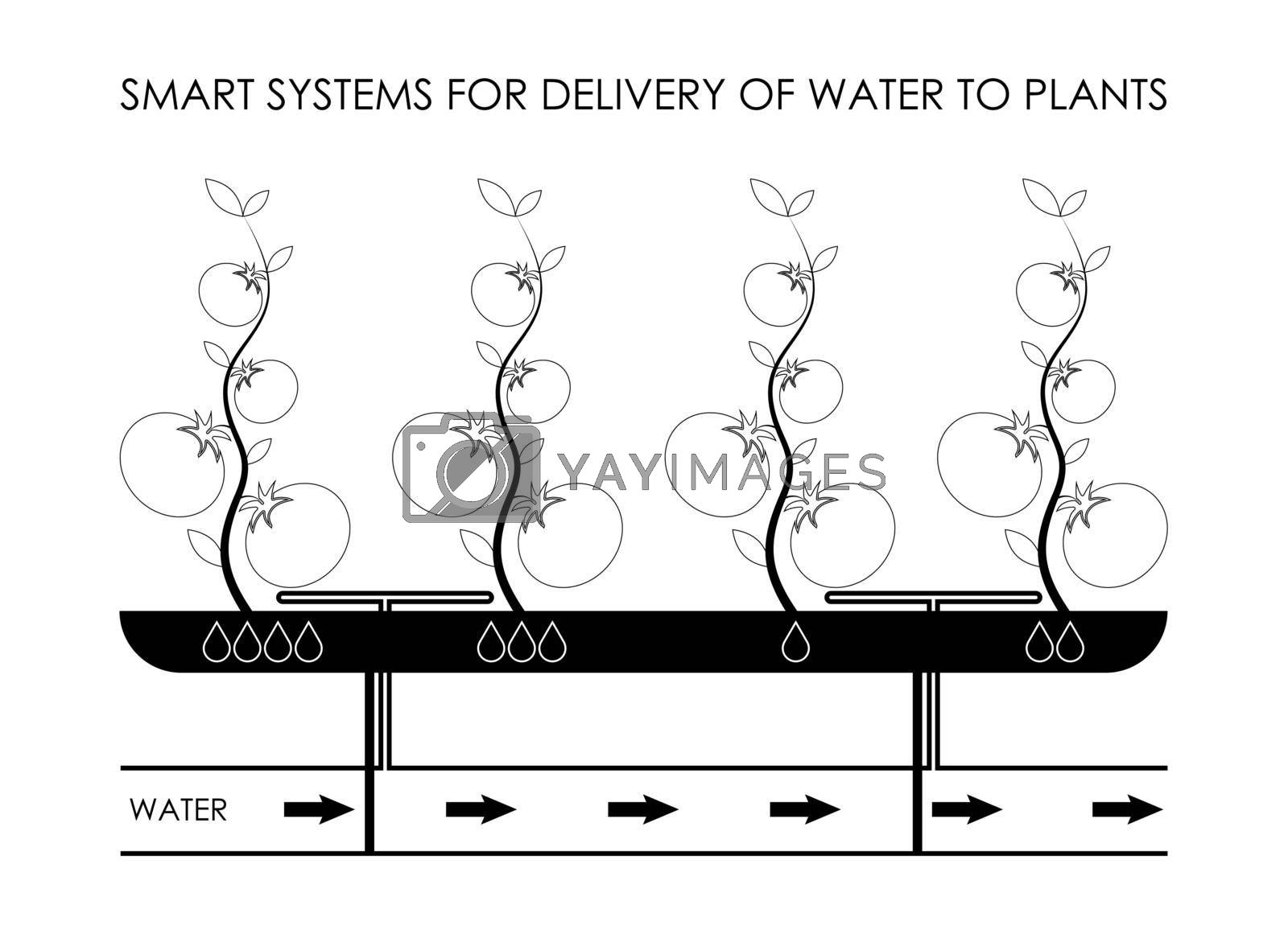 smart systems of point delivery of water to plants in greenhouses. Eco farming, increasing productivity. Isolated vector on white background