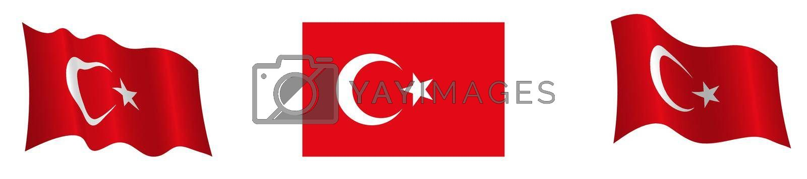 Flag of the Turkish Republic in a static position and in motion, developing in the wind, on a white background