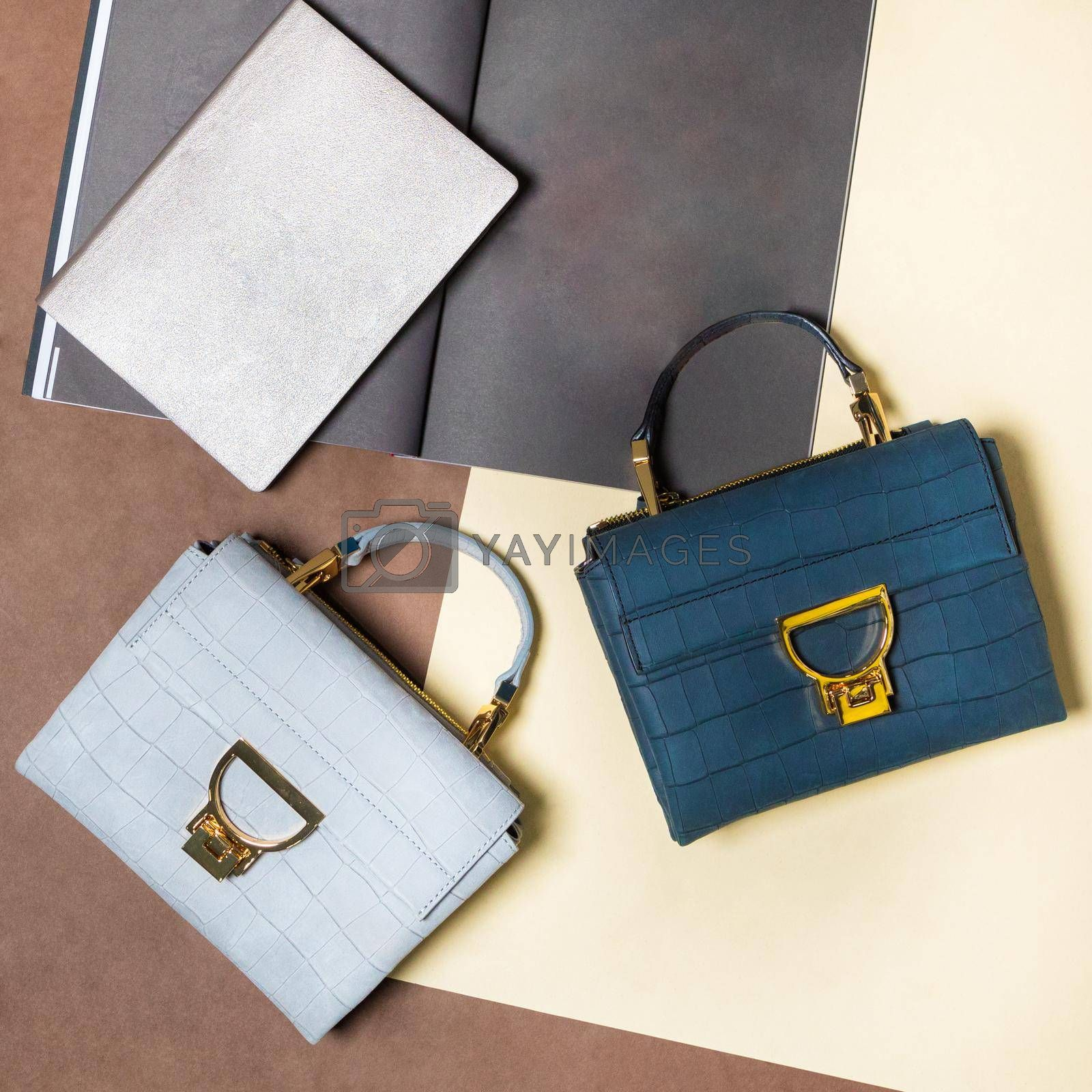 Woman handbags isolated top view