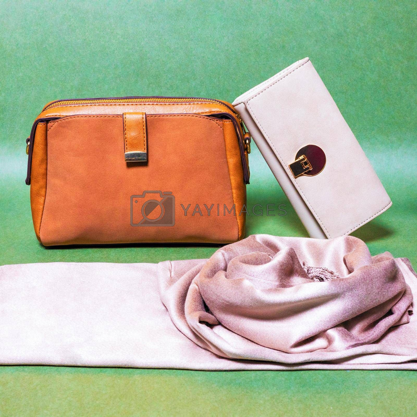 Leather color woman handbags isolated on a green background