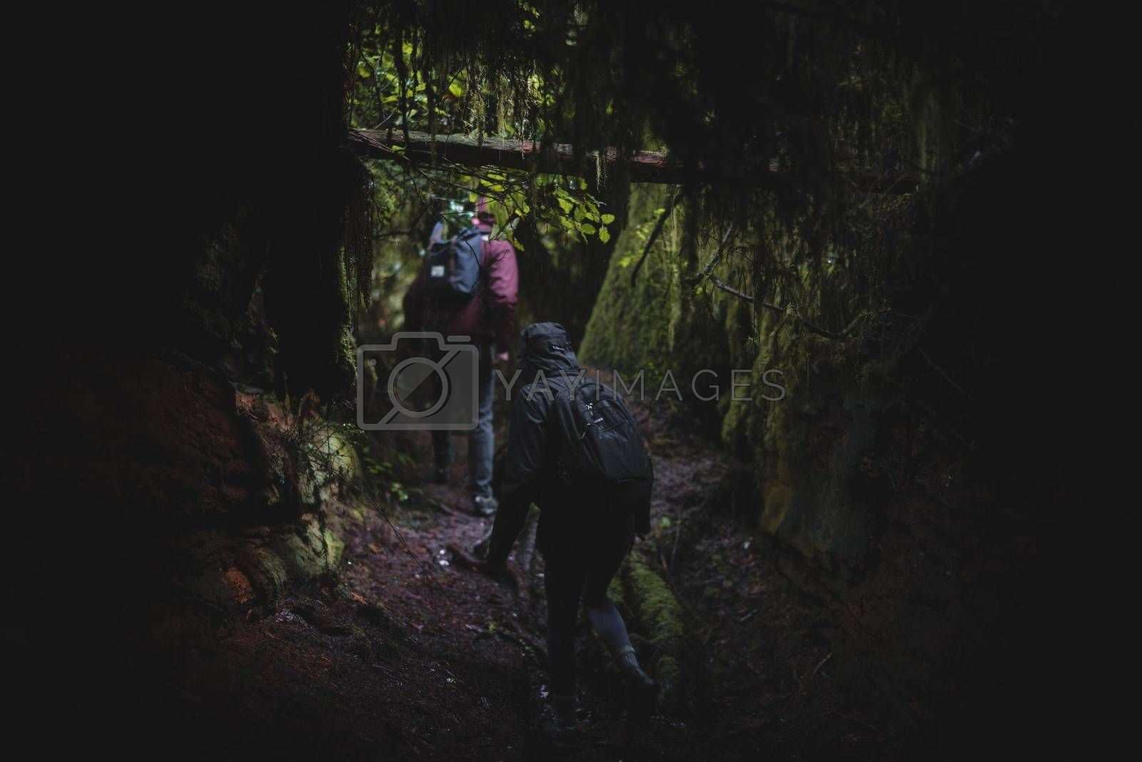 A group of friends exploring a forest cave.