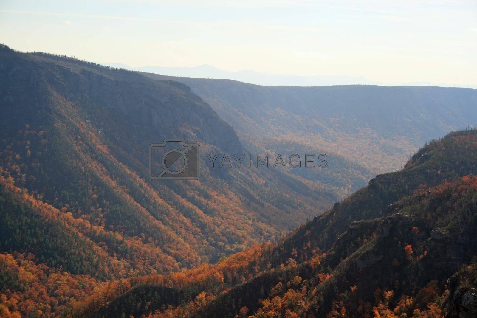 Blue Ridge Mountains, North Carolina