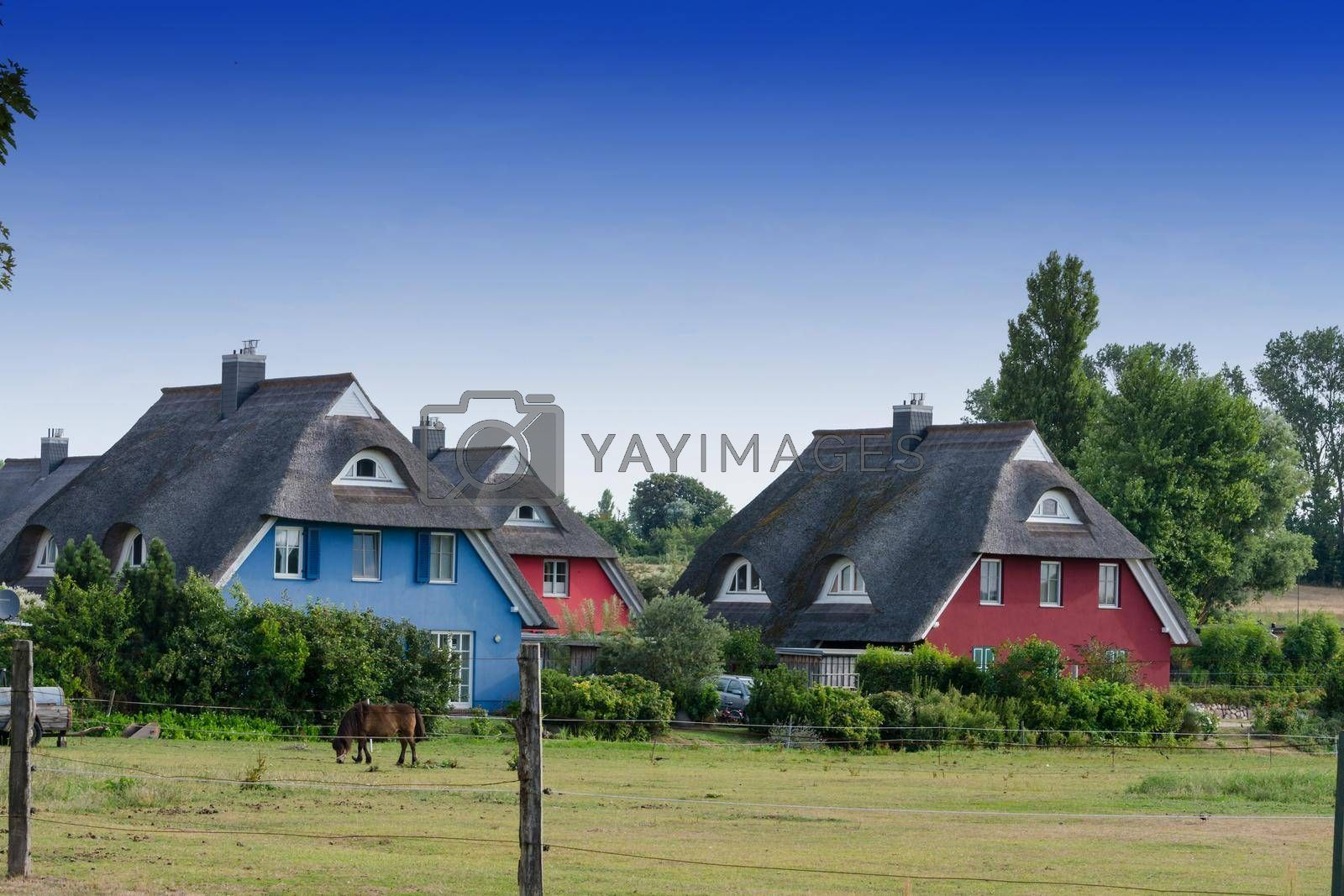 Royalty free image of Houses on the Fischland-Darß by JFsPic