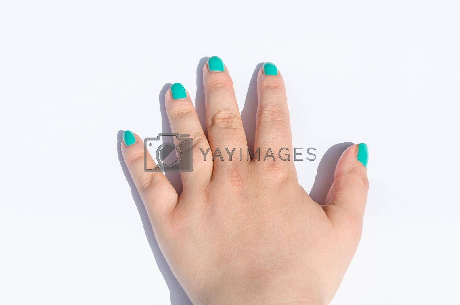 Royalty free image of Green manicure on short nails by JFsPic