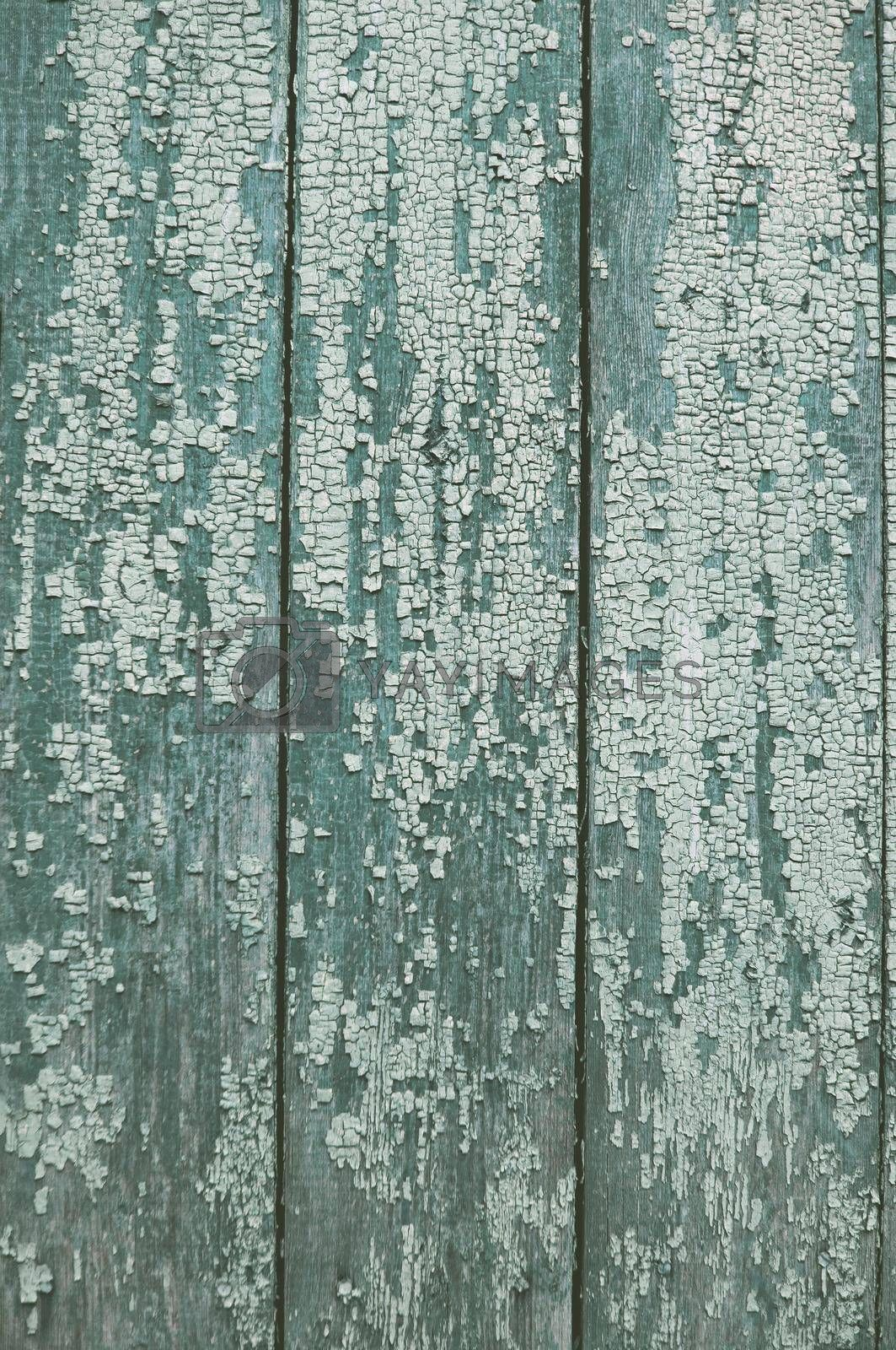 natural old blue wood background
