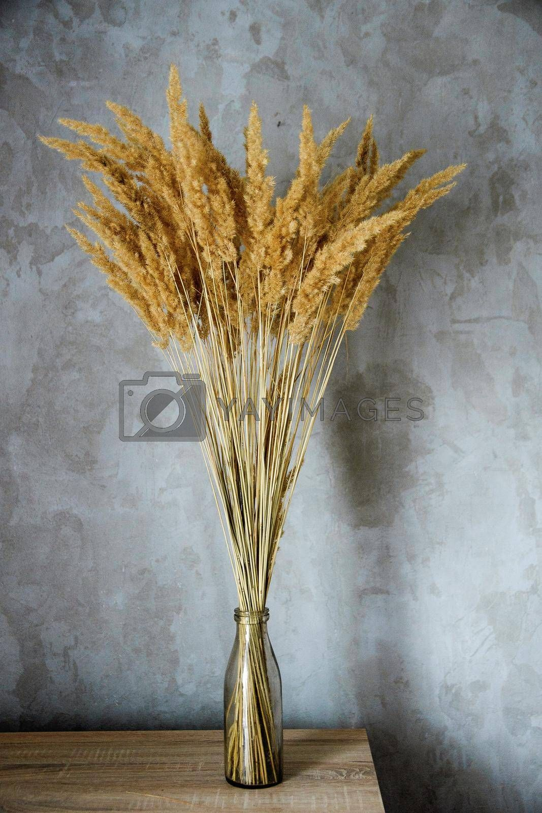 dried flower vase stands on a wooden table near a concrete wall
