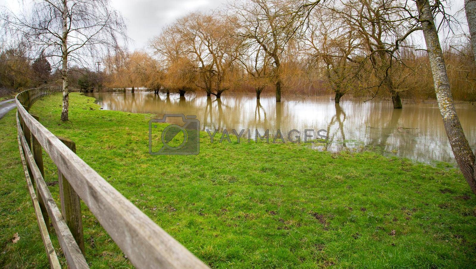 Flooded filed, high water, Farm fence, green grass, flooded filed with trees and water reflection. Global warming disaster. UK, England, Suffolk 2021