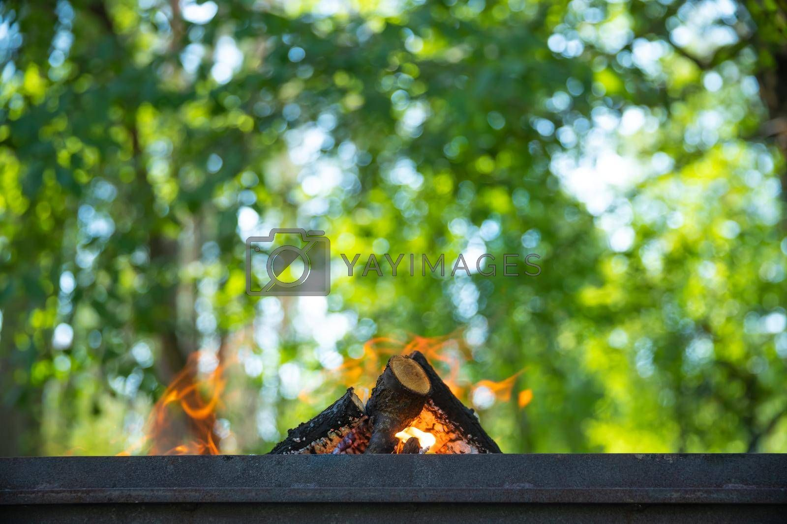 Closeup Photo of Campfire over Fresh Green Foliage Background in the Forest. Active Leisure Time Weekend Outdoors.