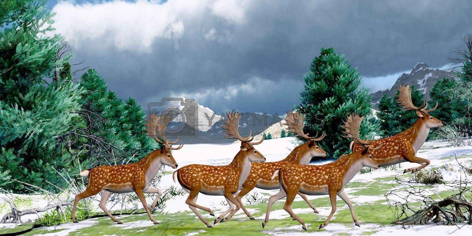 A herd of Fallow deer bucks run together in an evergreen forest in Europe during the Pleistocene Period.