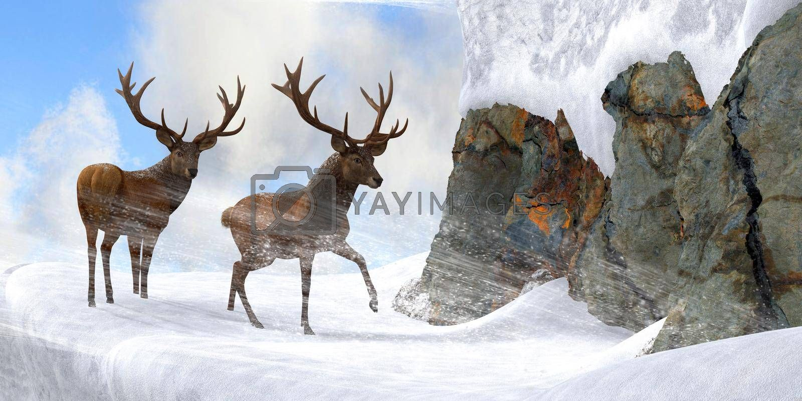 Red Stag Mountain Pass by Catmando