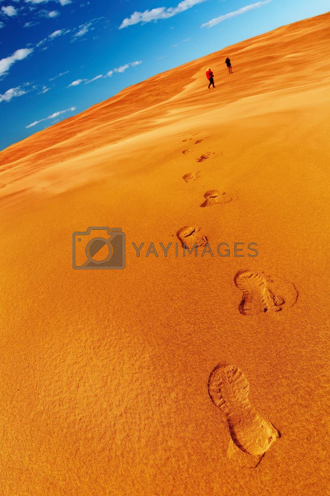 People in desert, sand dune climbing