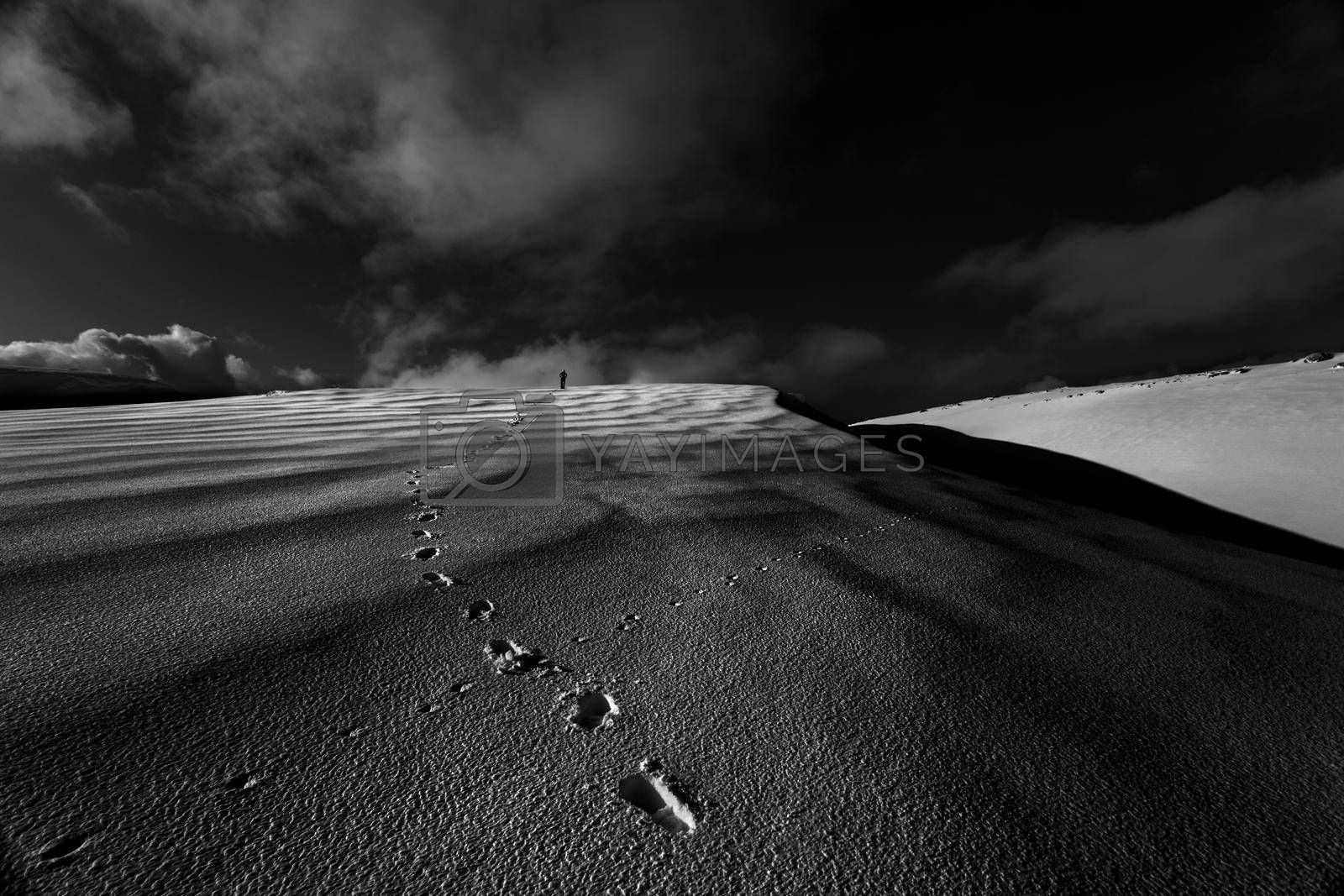 Black and White Photo Of a Footprints on the Snowy Hill. Wintertime Hiking. Beautiful Nature of Lebanon.