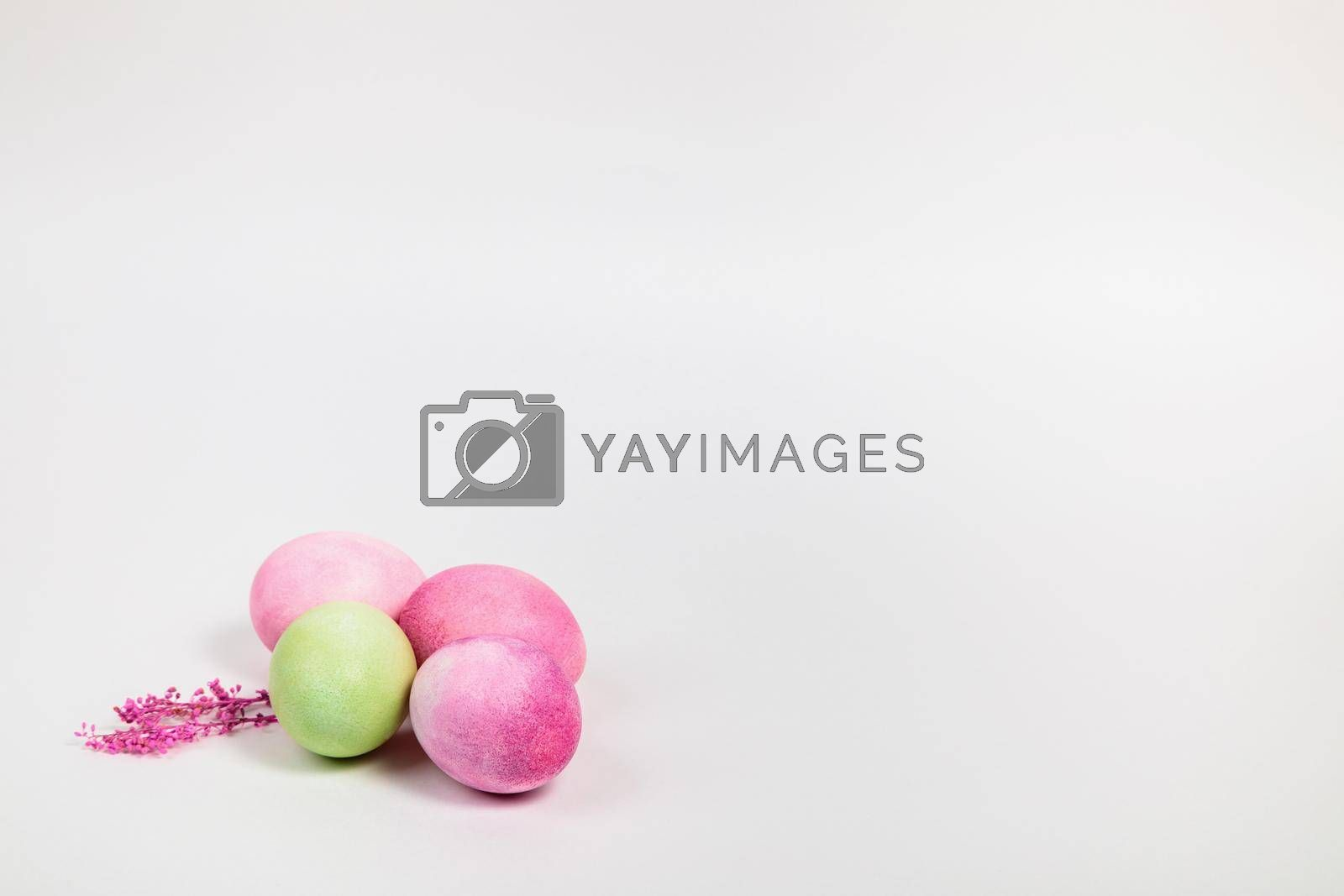 Easter. Multi-colored eggs with twigs, on a white background with a place for text. View from above