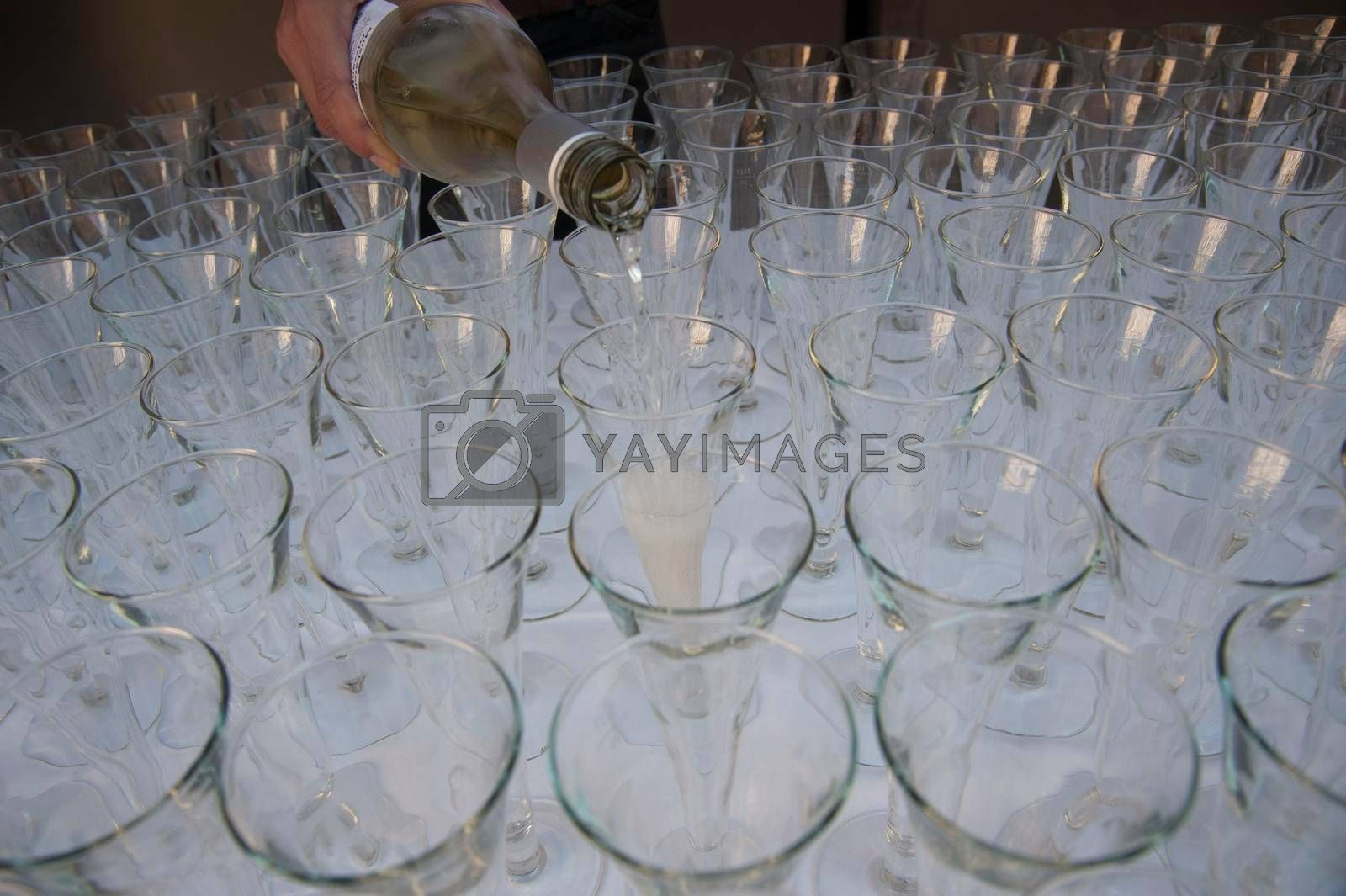 pouring champagne into champagne glasses by Gubisch