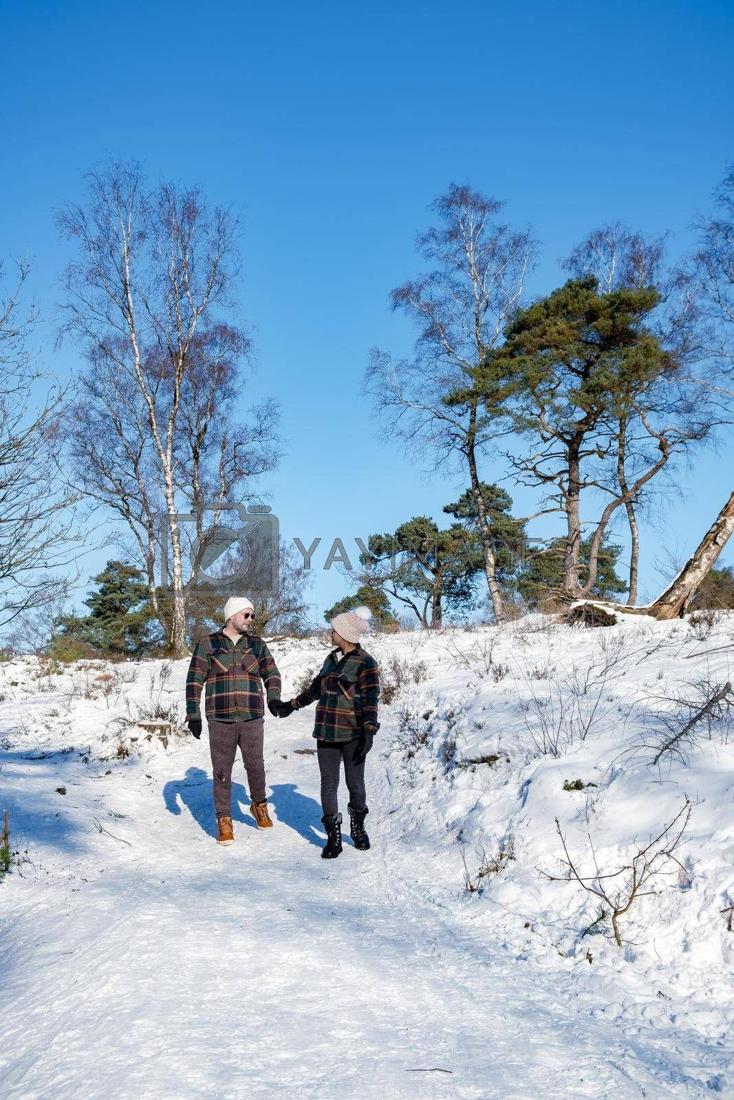 couple man and woman mid age walking in the snow, snow covered hills of the Sallandse Heuvelrug, Landscapes of the Holterberg near Holten, The Netherlands. Winter in the Netherlands