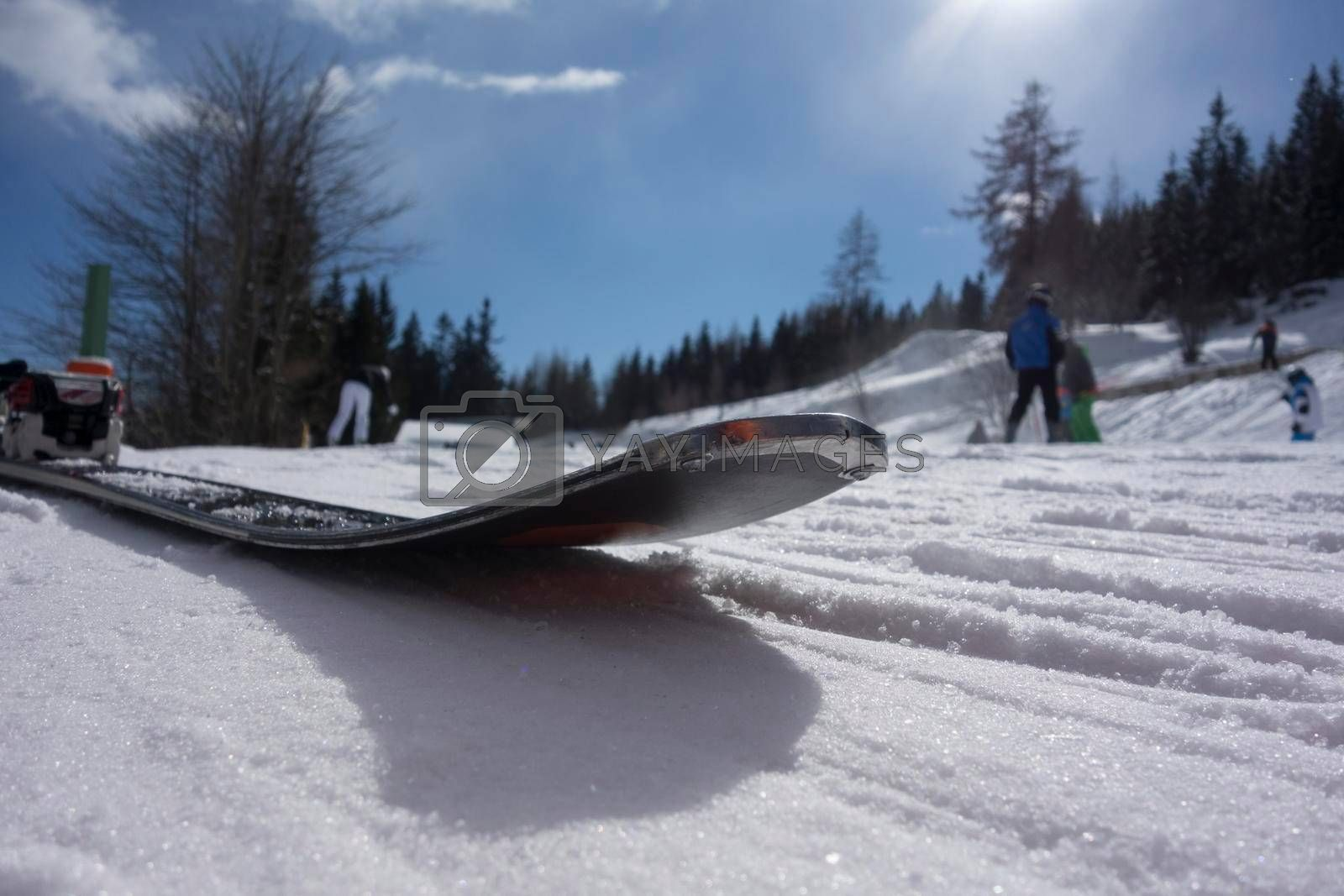 ski in winter, outdoor sports in the snow of the mountains