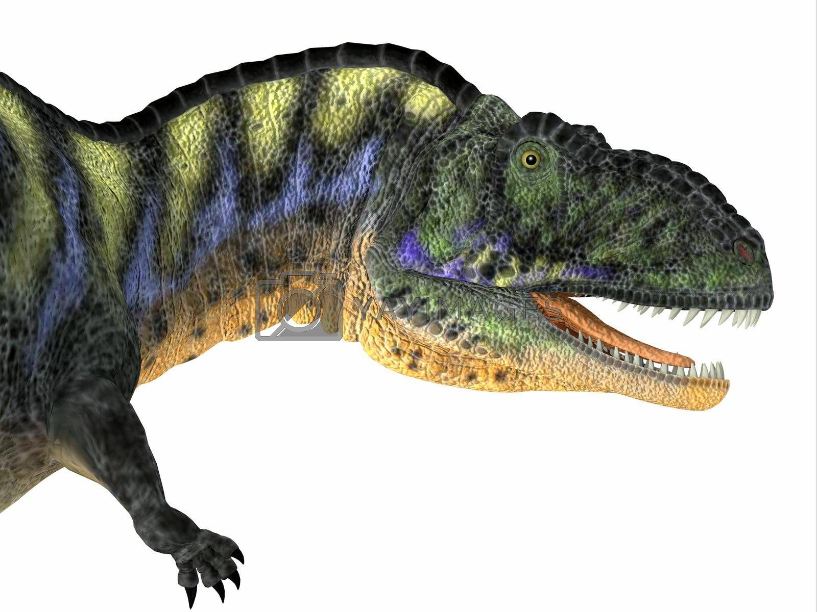Aucasaurus was a carnivorous theropod dinosaur that lived in Argentina during the Cretaceous Period.