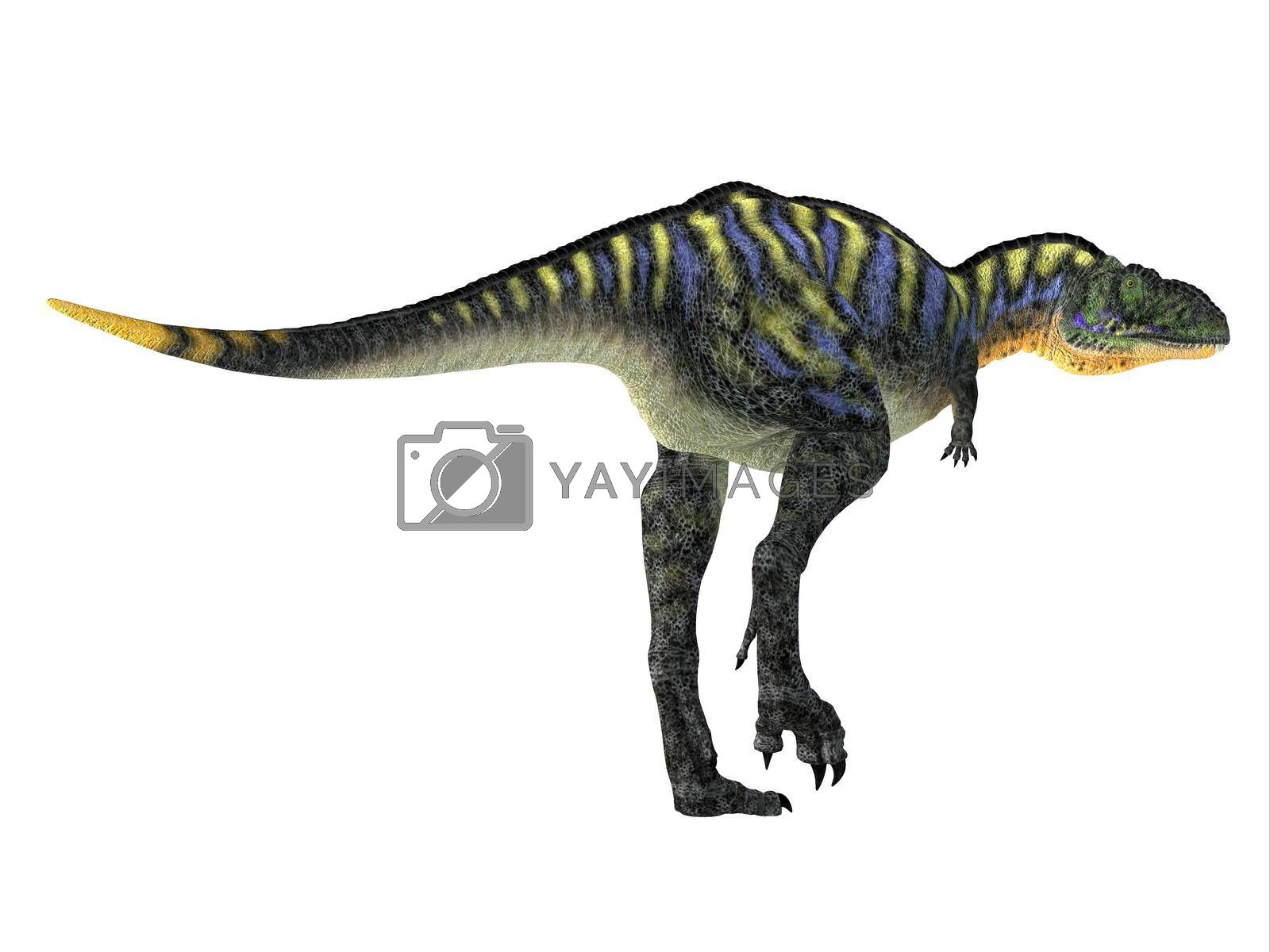 Royalty free image of Aucasaurus Dinosaur Tail by Catmando
