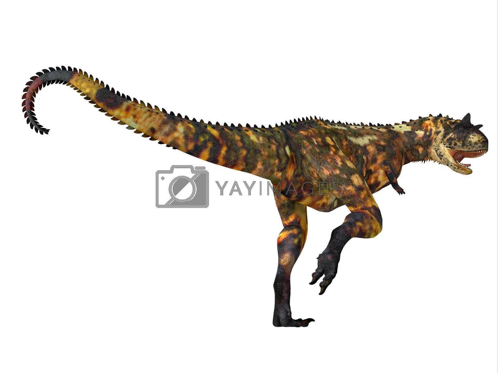 Carnotaurus was a carnivorous theropod dinosaur that lived in Patagonia and Argentina during the Cretaceous Period.