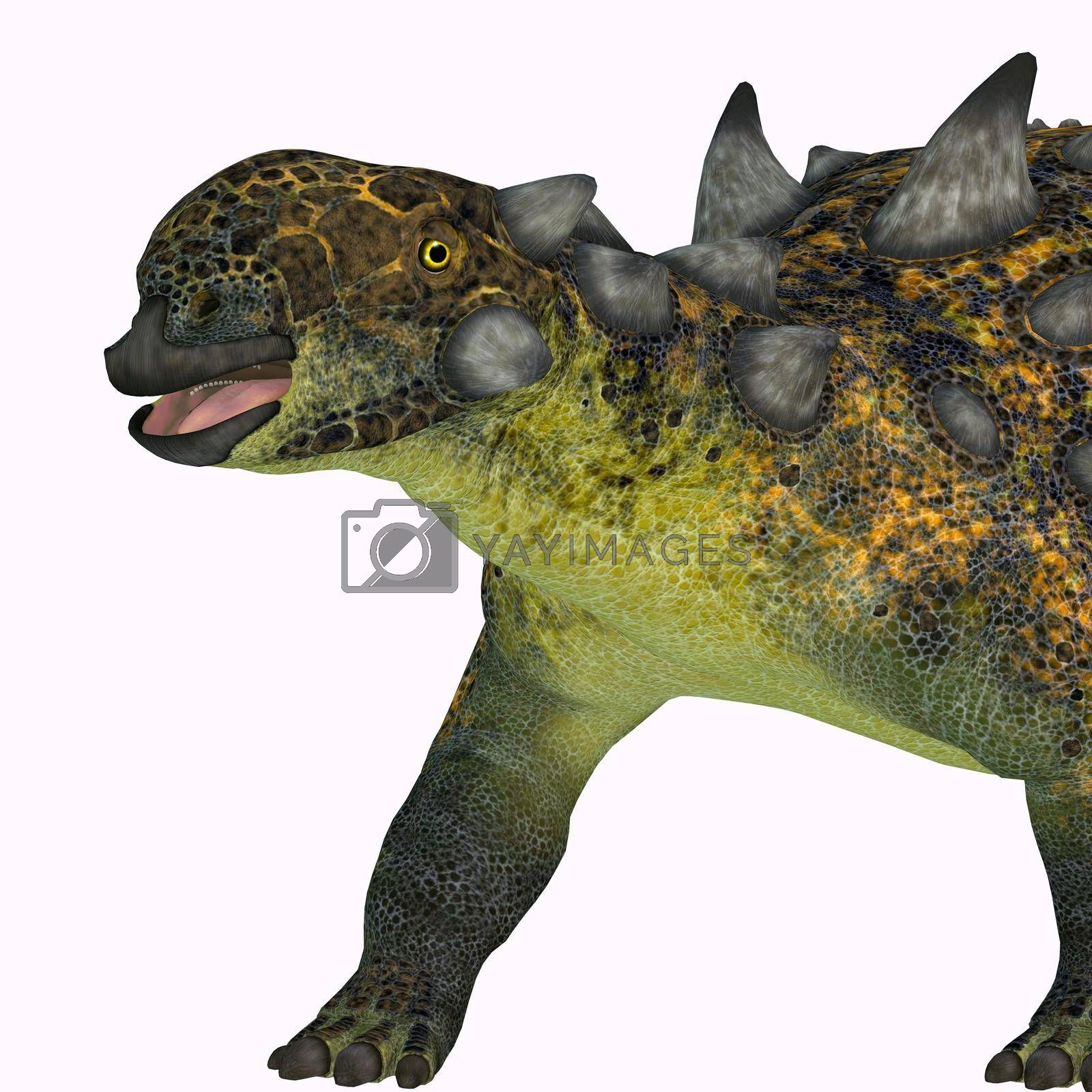 The ankylosaurid Euoplocephalus was a herbivorous armored dinosaur that lived in Canada during the Cretaceous Period.
