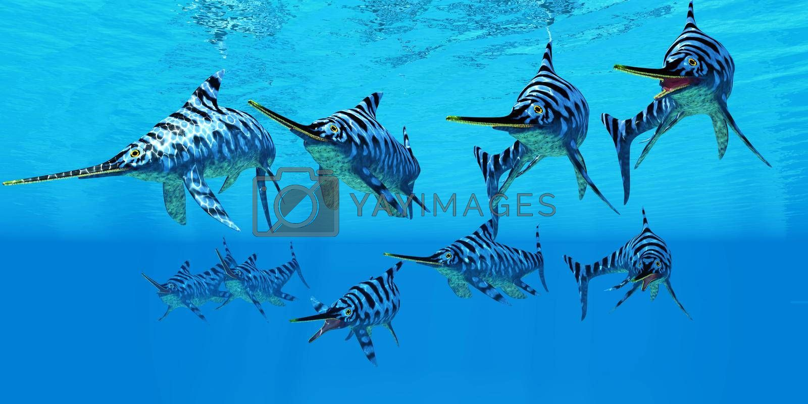 A Eurhinosaurus marine reptile pod swim together to hunt for their prey during the Jurassic Period.