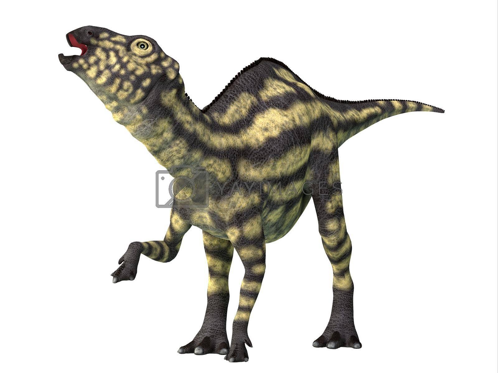 Royalty free image of Maiasaura Juvenile Dinosaur by Catmando