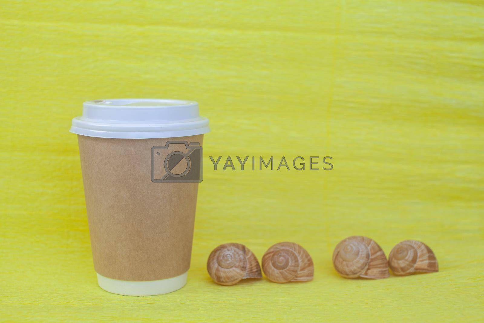 paper cup of coffee covered with a white lid and next to it sea shells by AnatoliiFoto