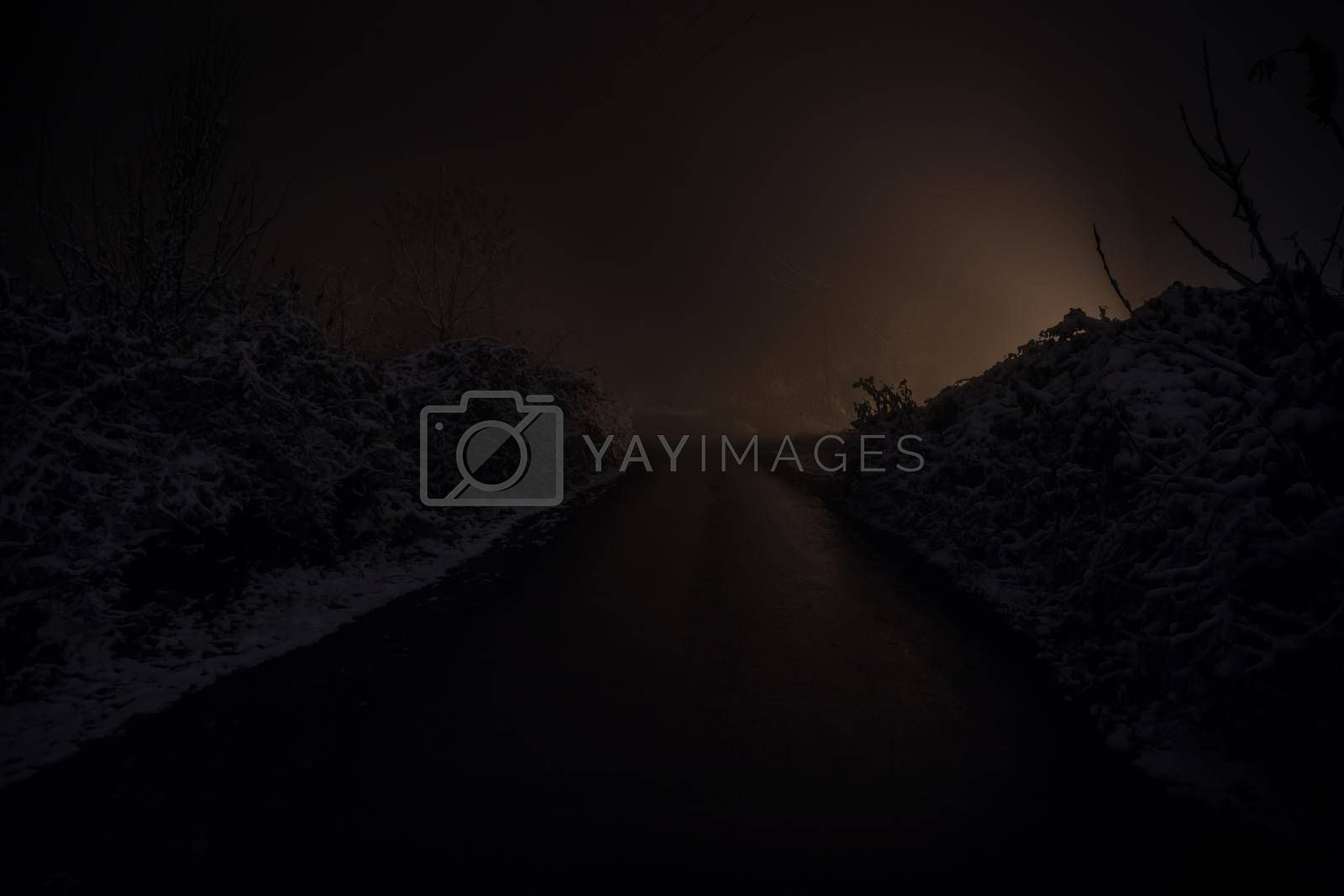 Mountain Road through the snowy forest on a full moon night. Scenic night winter landscape of dark blue sky with moon and stars. Azerbaijan