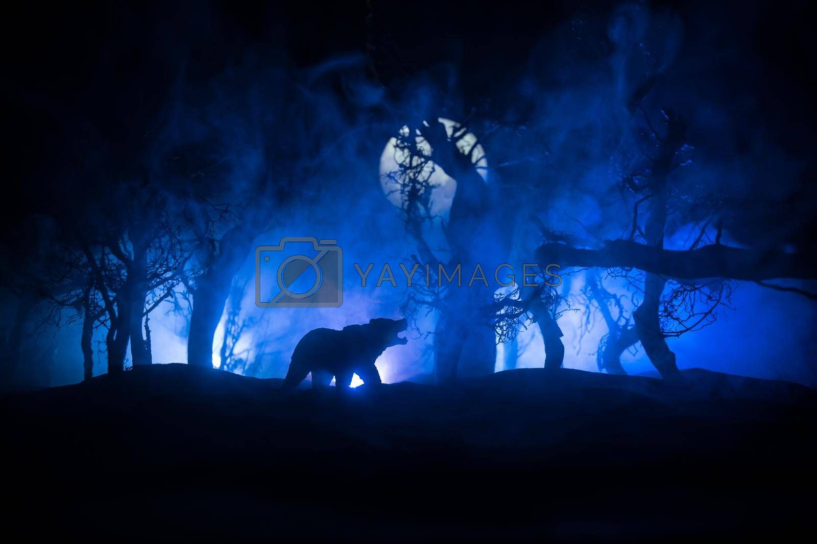 Horror view of big bear in dead forest at night. Angry bear behind the cold blue toned cloudy sky under moonlight. The silhouette of a bear in foggy forest dark background