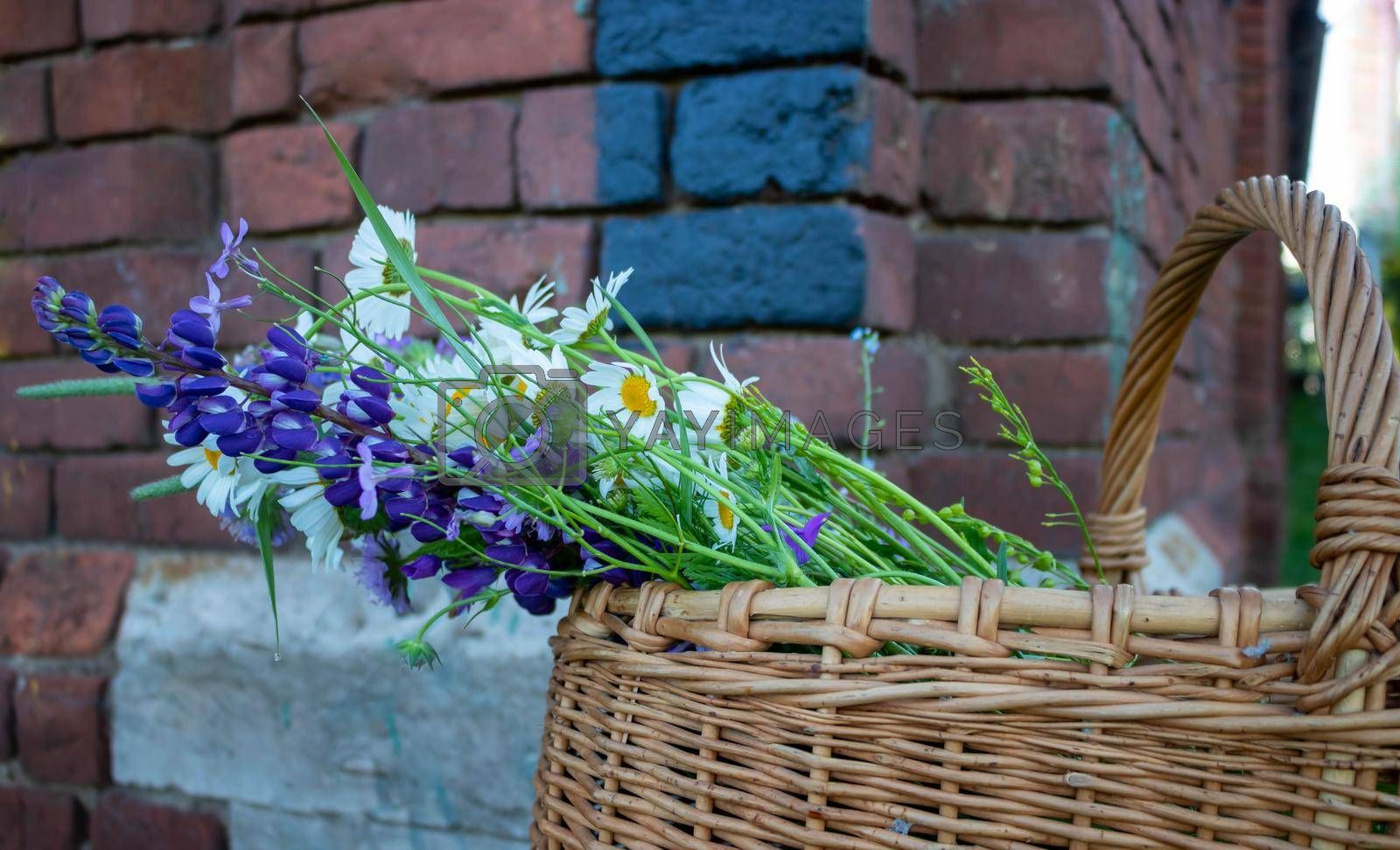 Beautiful bouquet of wildflowers in a basket, isolated against a brick wall background.