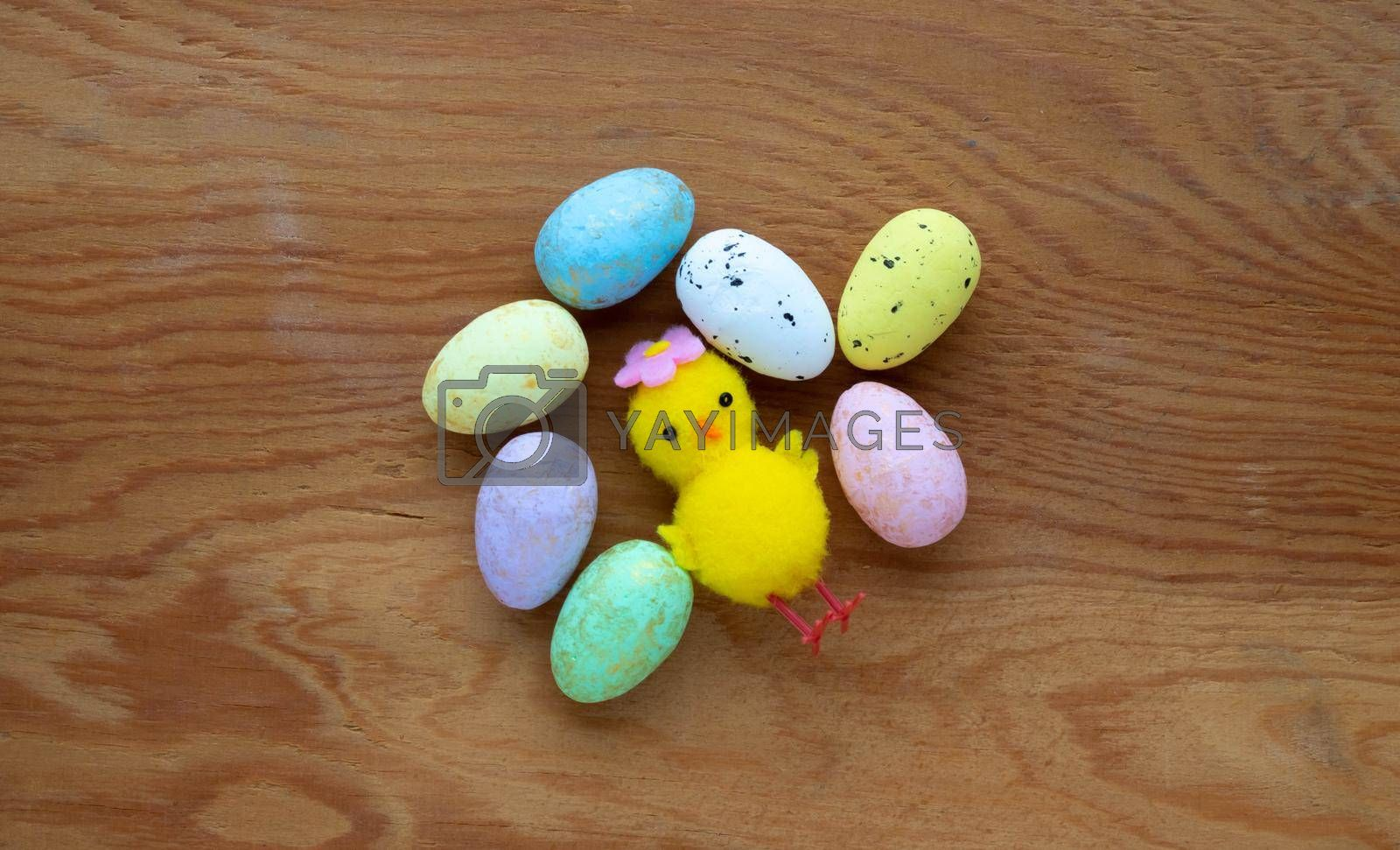 Colorful Easter toy eggs and a yellow toy chicken on a wooden background.The Concept Of Easter by lapushka62