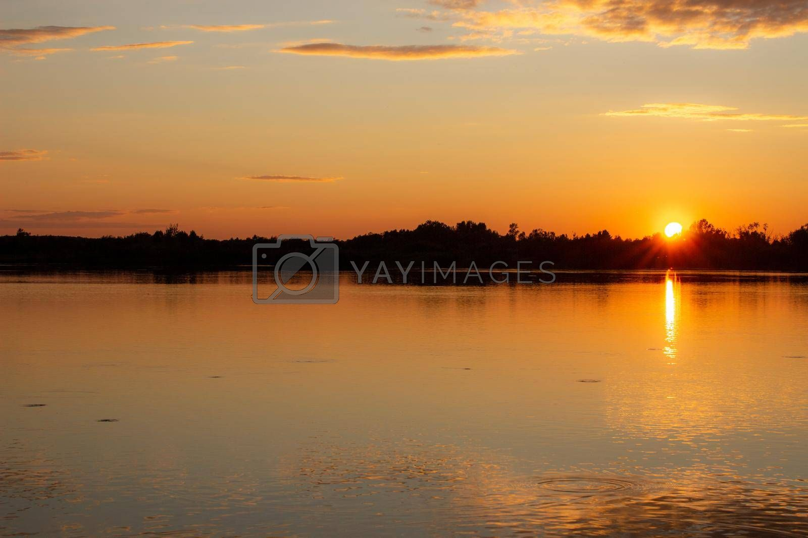 Royalty free image of A colorful sunny sunset is reflected on the surface of the calm lake. by AnatoliiFoto