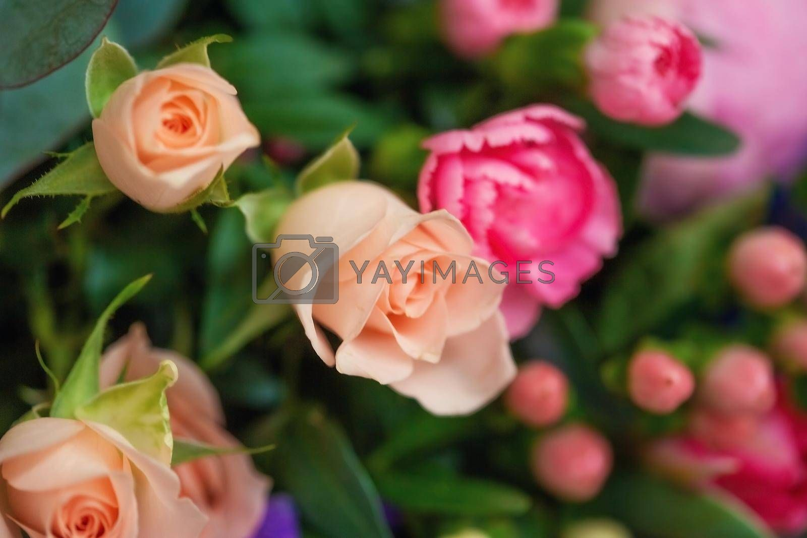 Close-up of different pastel roses in a bouquet on the table at the florist, macro shooting with natural light.